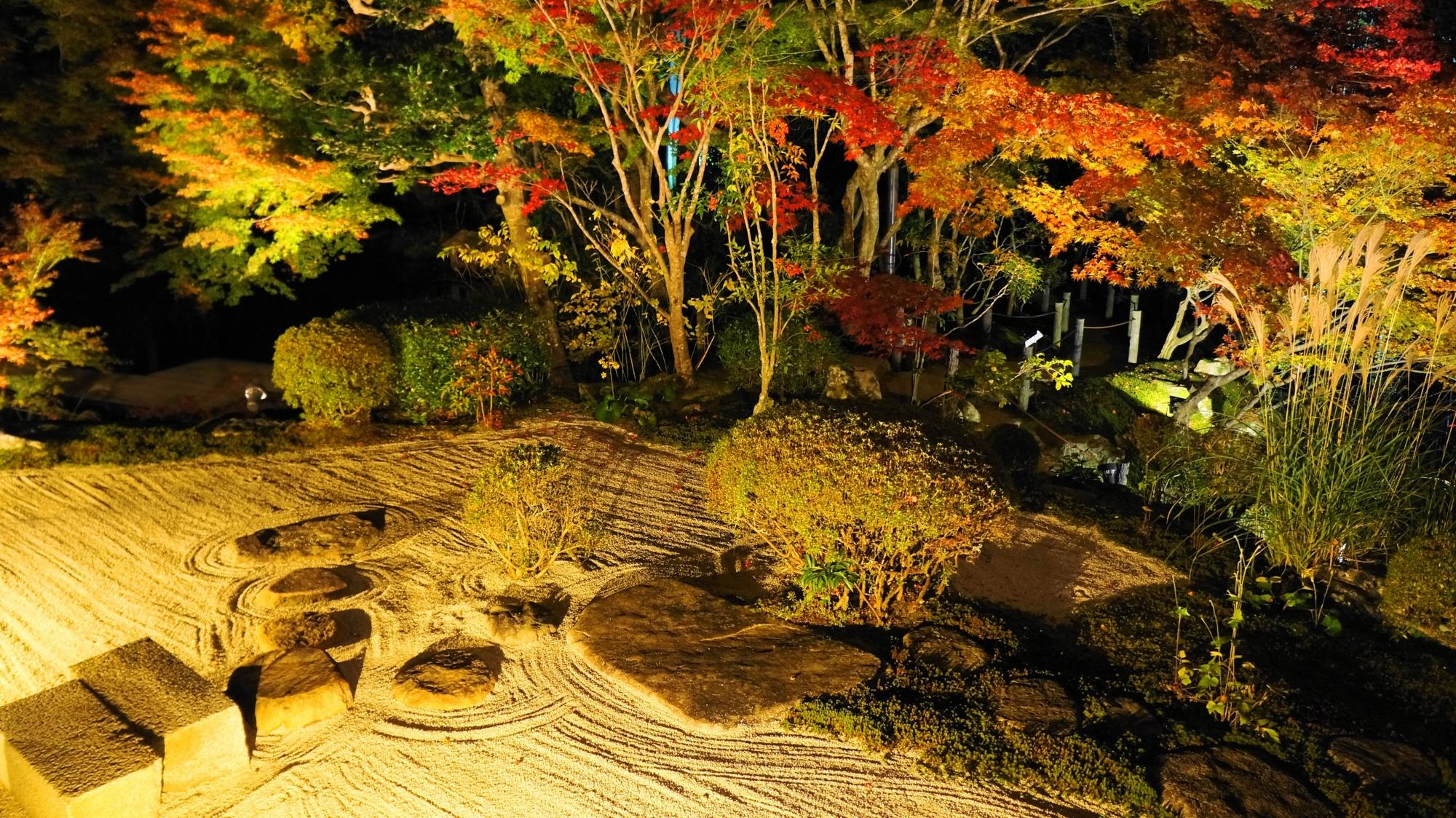 艶やかな雰囲気のするライトアップされた夜の天寿庵の庭園