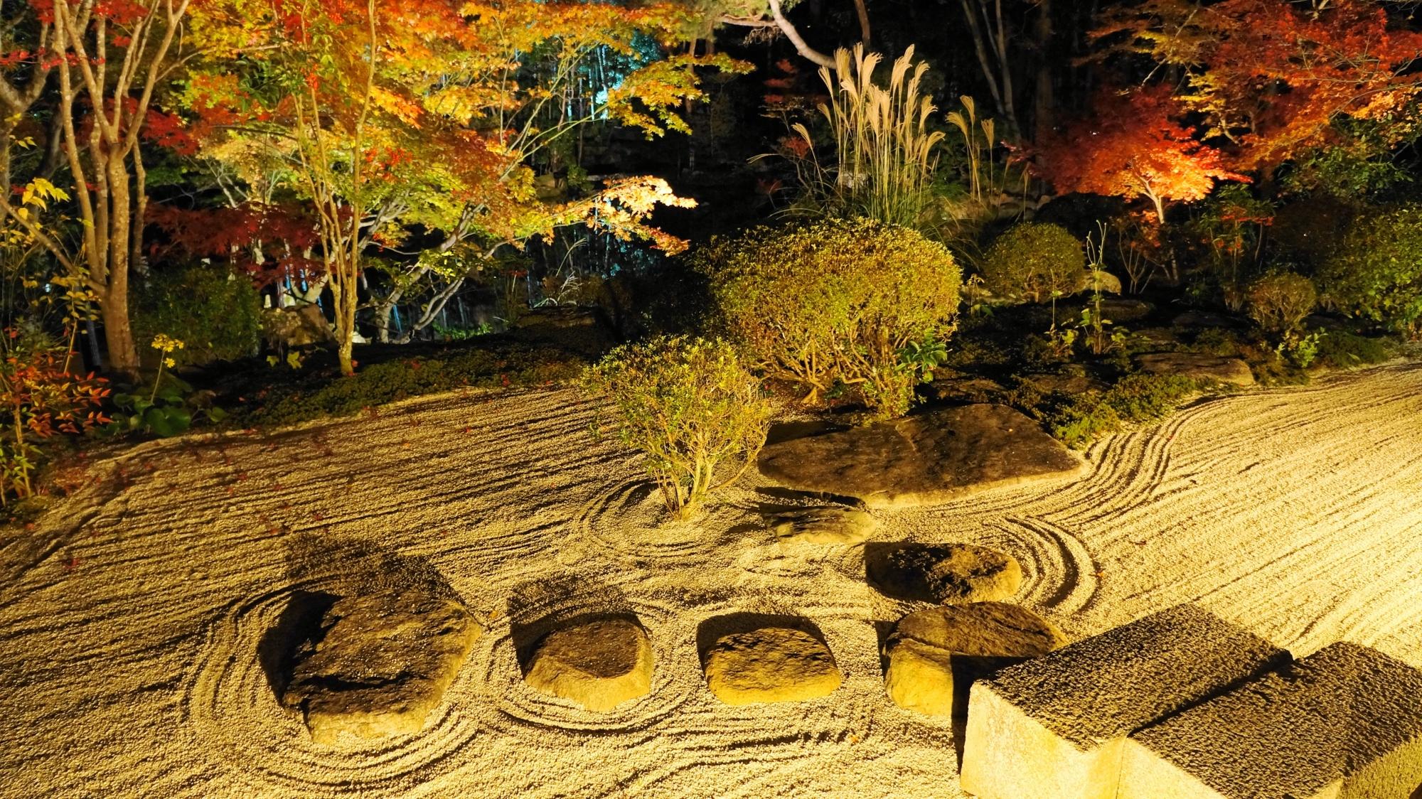 昼間とは違う雰囲気のライトアップされた枯山水庭園