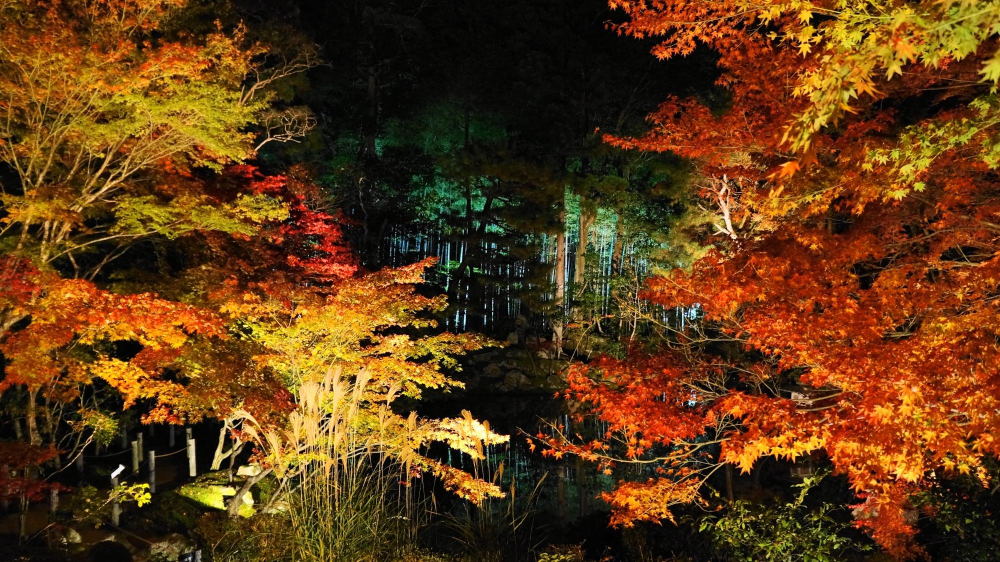天寿庵の鮮やかな紅葉と奥の緑の竹林