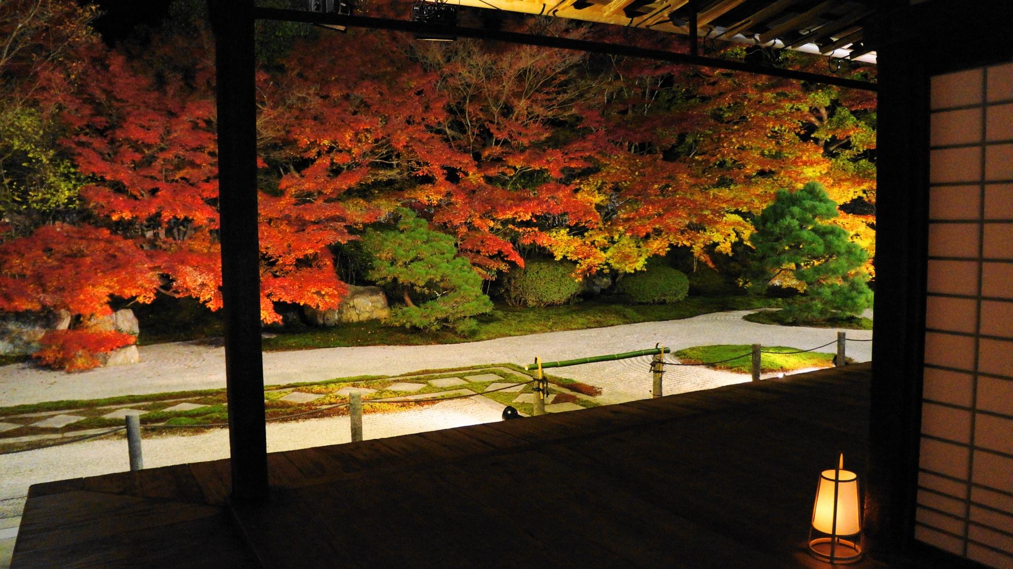 天寿庵の本堂正面に広がる迫力の紅葉の庭園