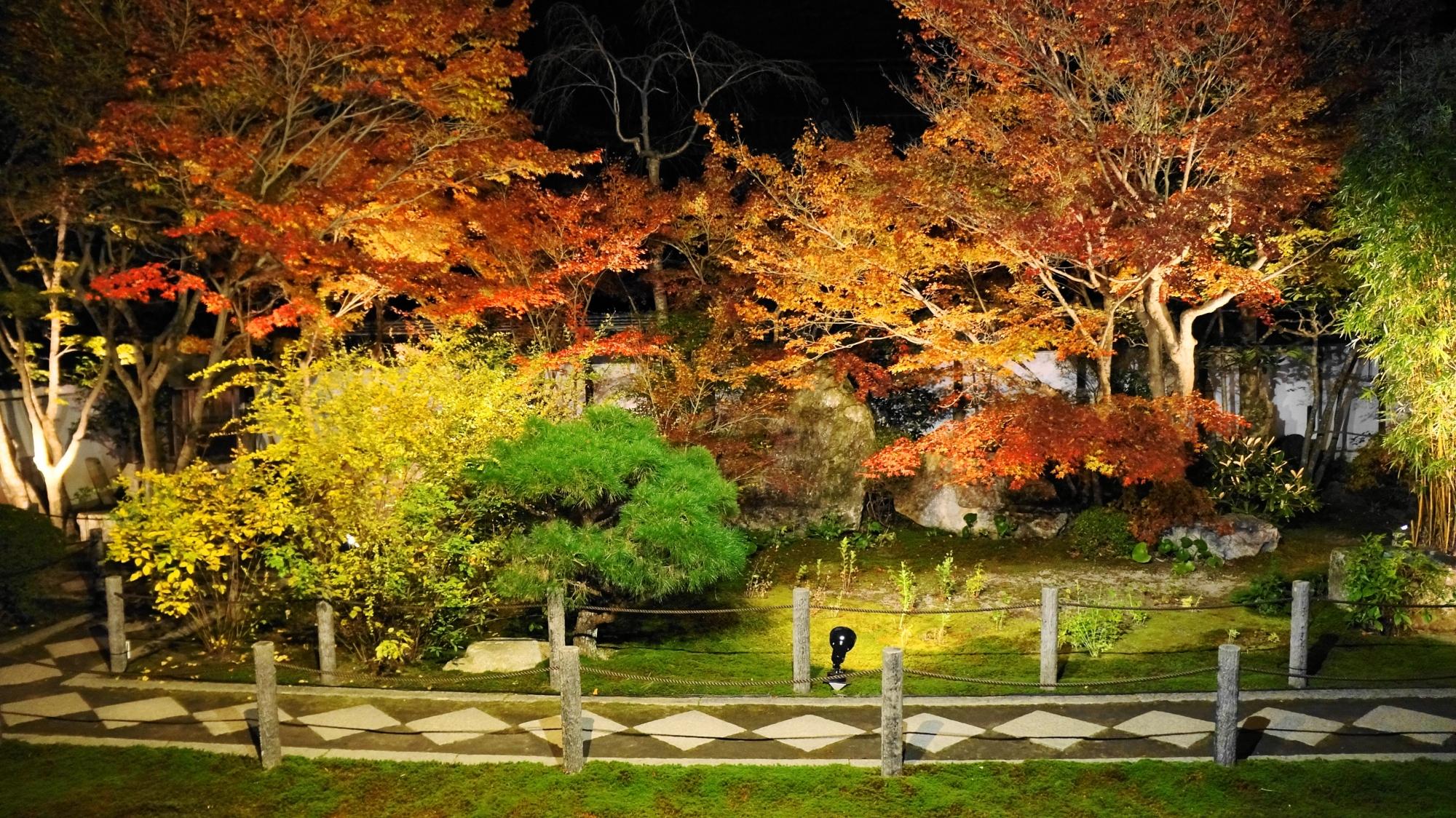天寿庵の独特の飛び石を華やぐ夜の紅葉