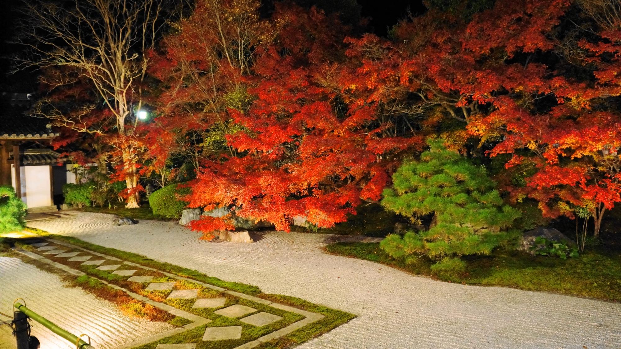 天寿庵の豪快に色づく圧巻の夜の紅葉
