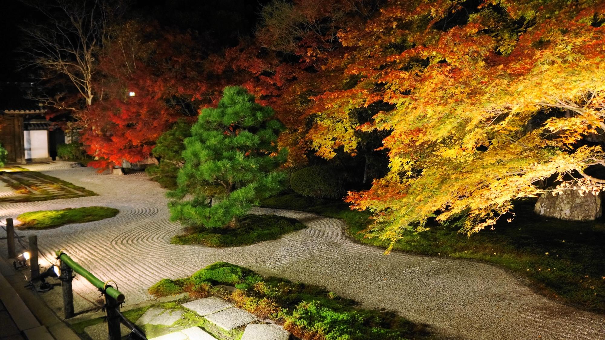 夜の石庭を妖艶に彩る黄色い紅葉と赤い紅葉