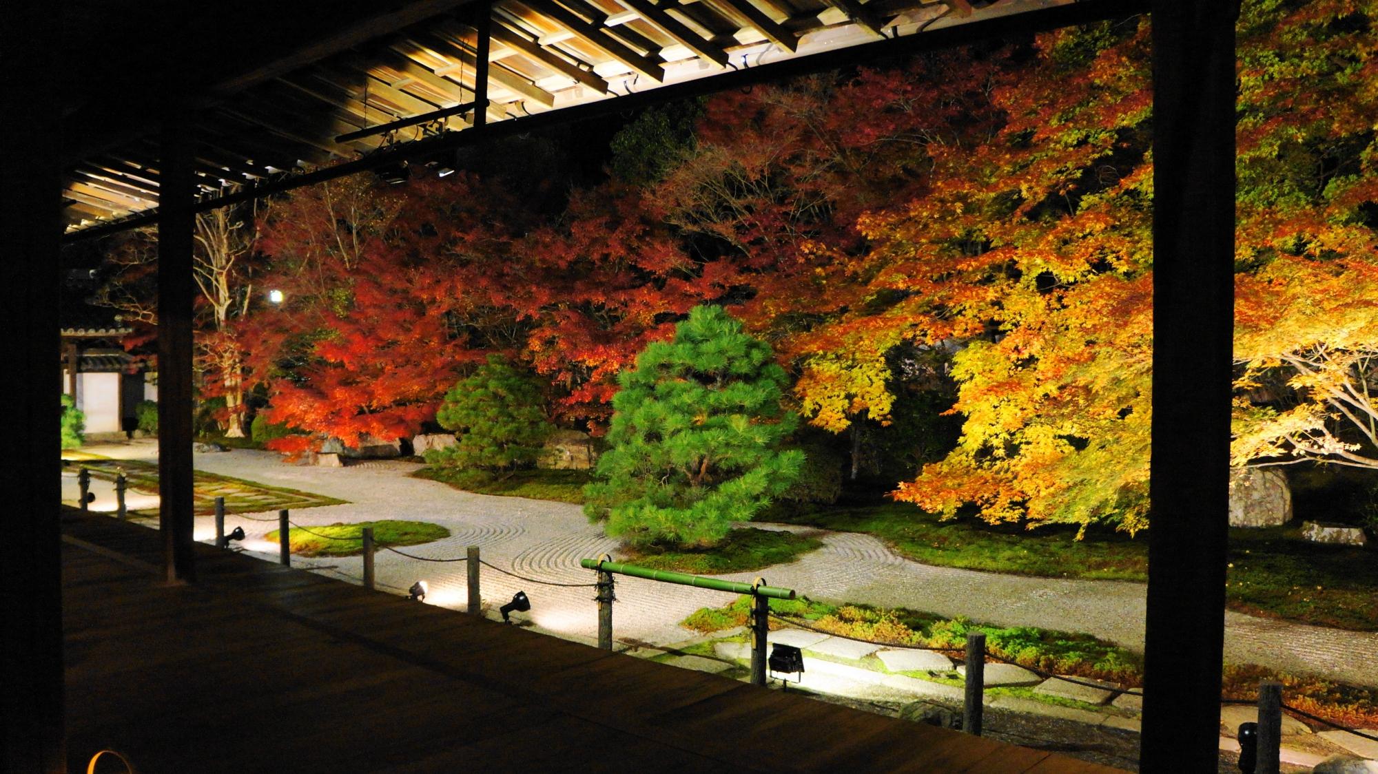 天寿庵の同時に静けさも伝わってくる夜を華やぐ圧巻の紅葉