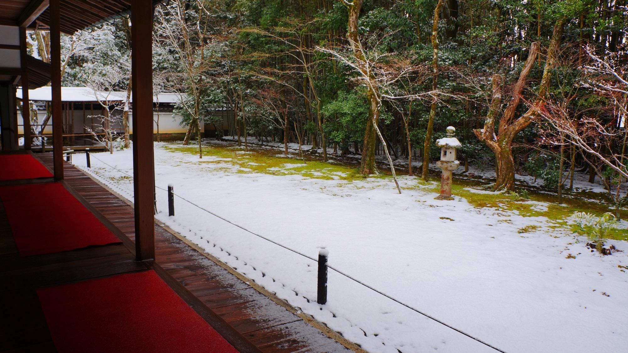 高桐院 雪 静寂と趣きの冬景色