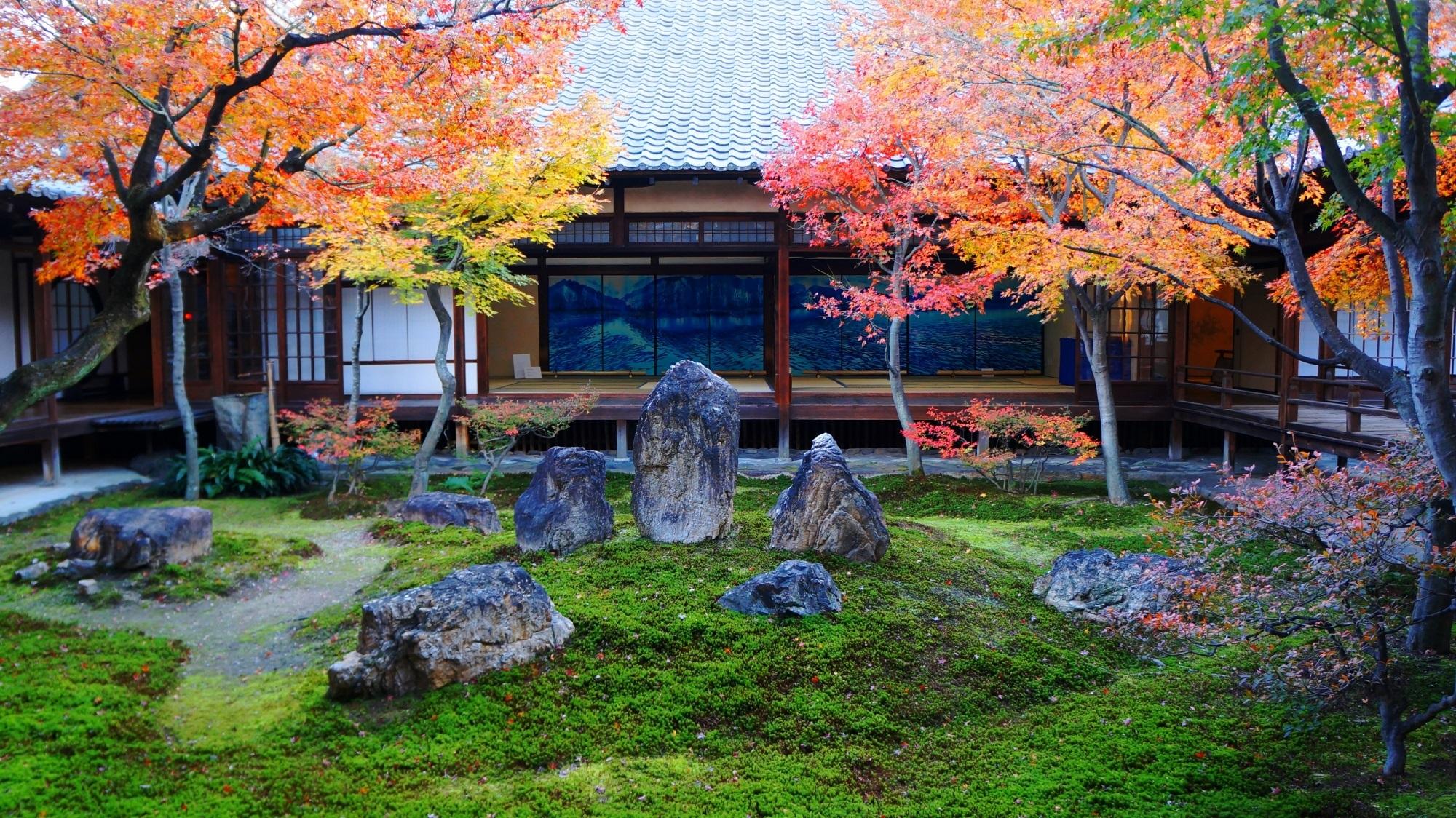 京都 建仁寺 紅葉 晩秋の美しい彩り