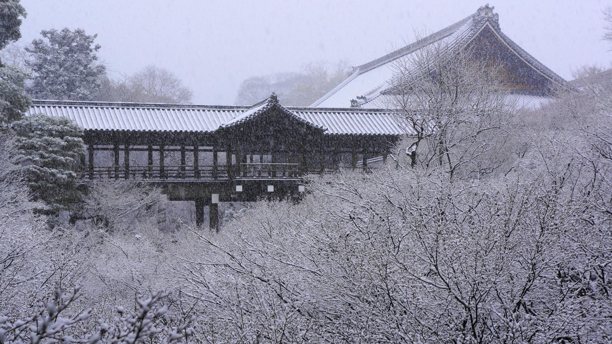 満開の雪の花の中に佇む通天橋