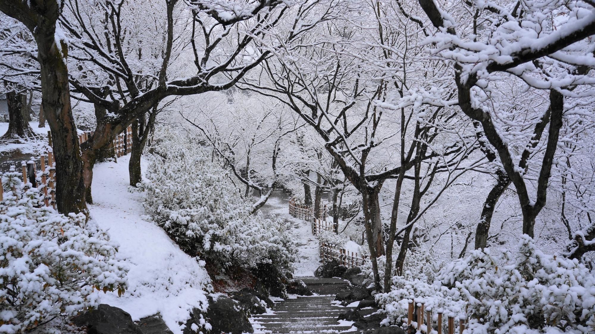 東福寺の芸術的な冬景色