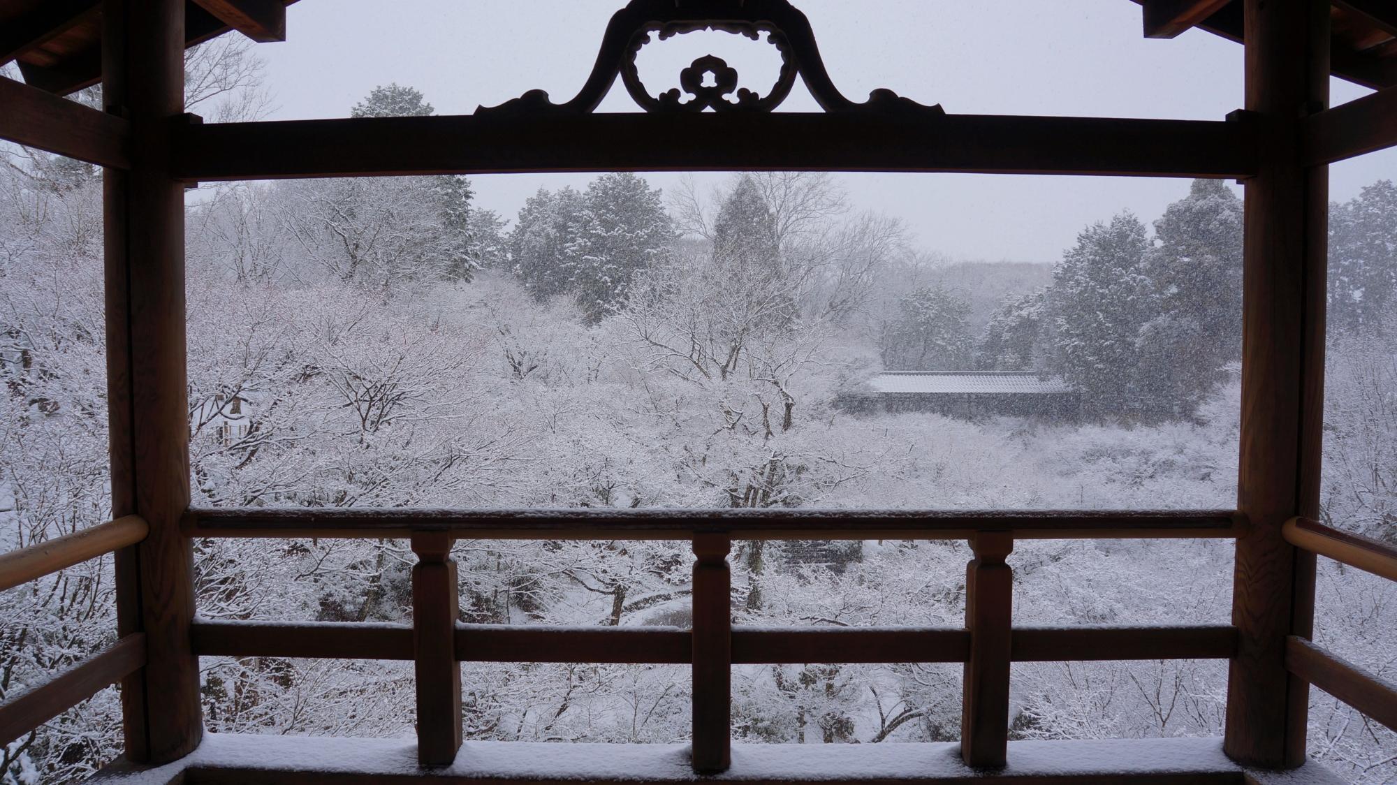 東福寺の額縁の満開の雪の花