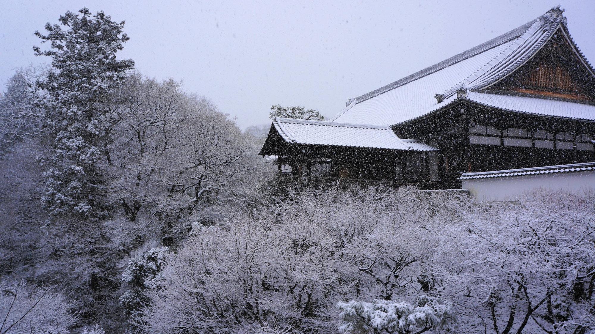 通天橋から眺めた方丈の雪景色