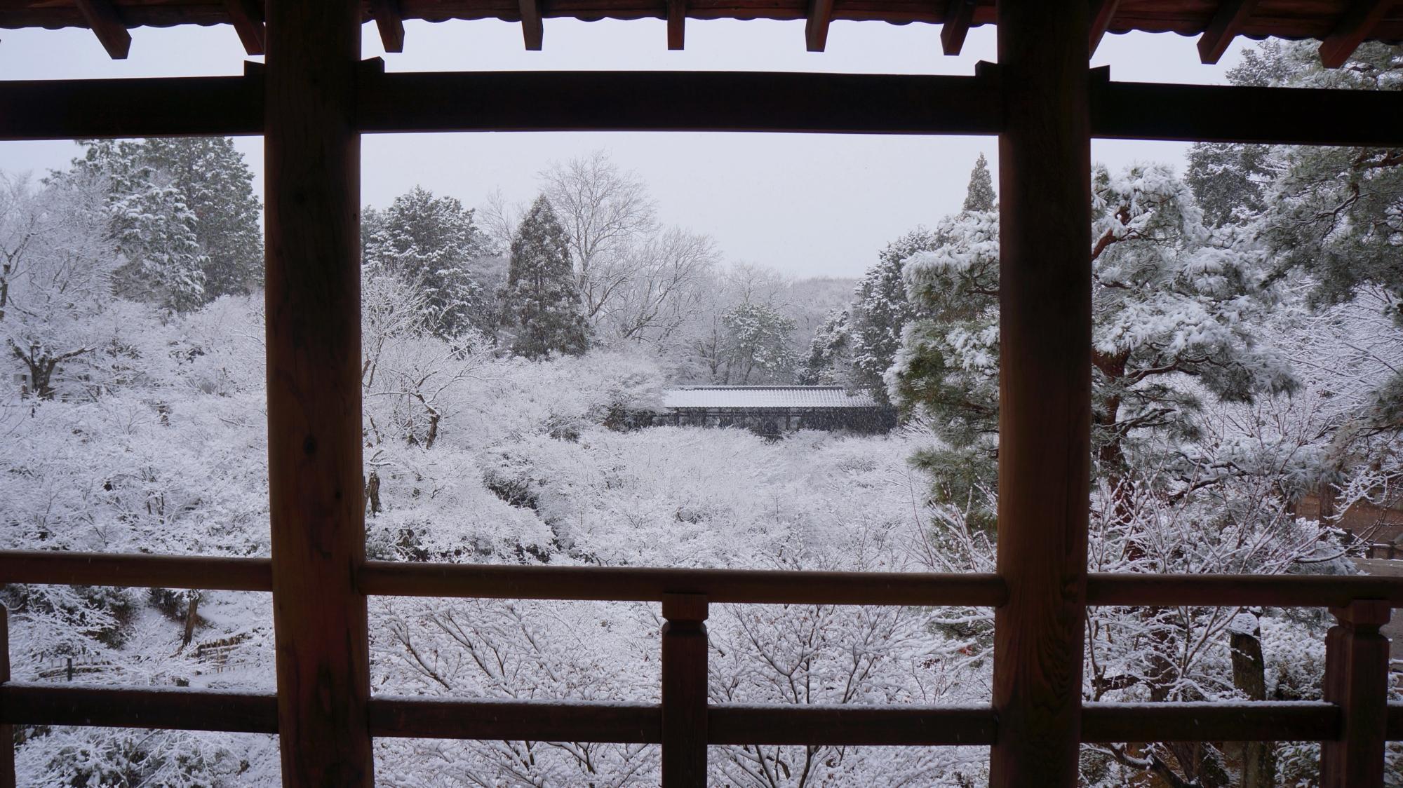 高画質 写真 東福寺 雪景色