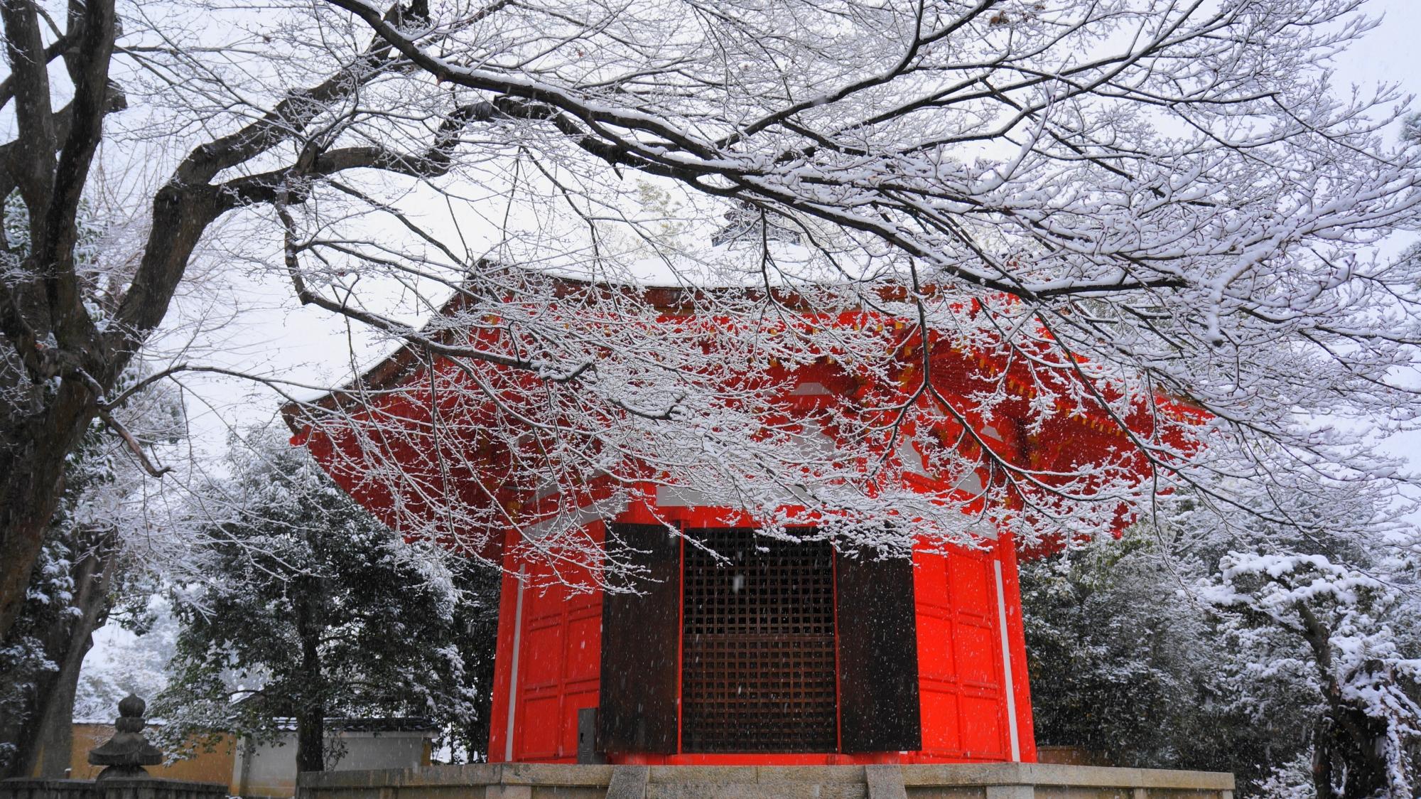 雪の日にしか楽しめない紅白の景色