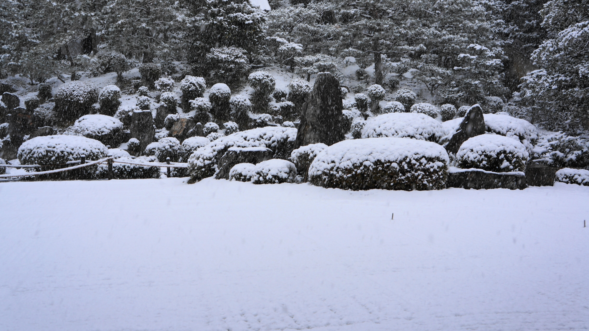 池泉式庭園と砂の枯山水庭園が融合した開山堂庭園