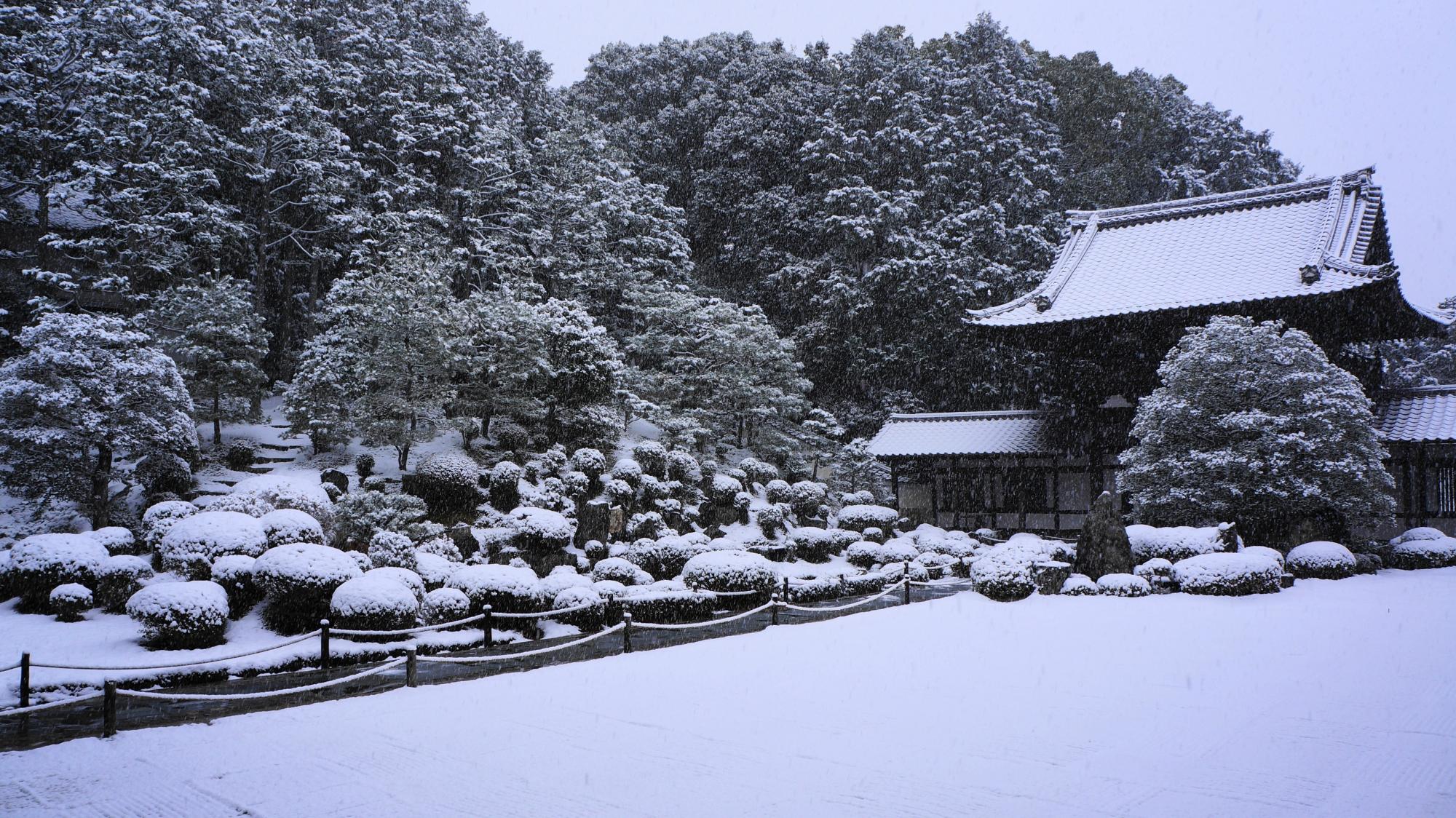 白銀の開山堂庭園