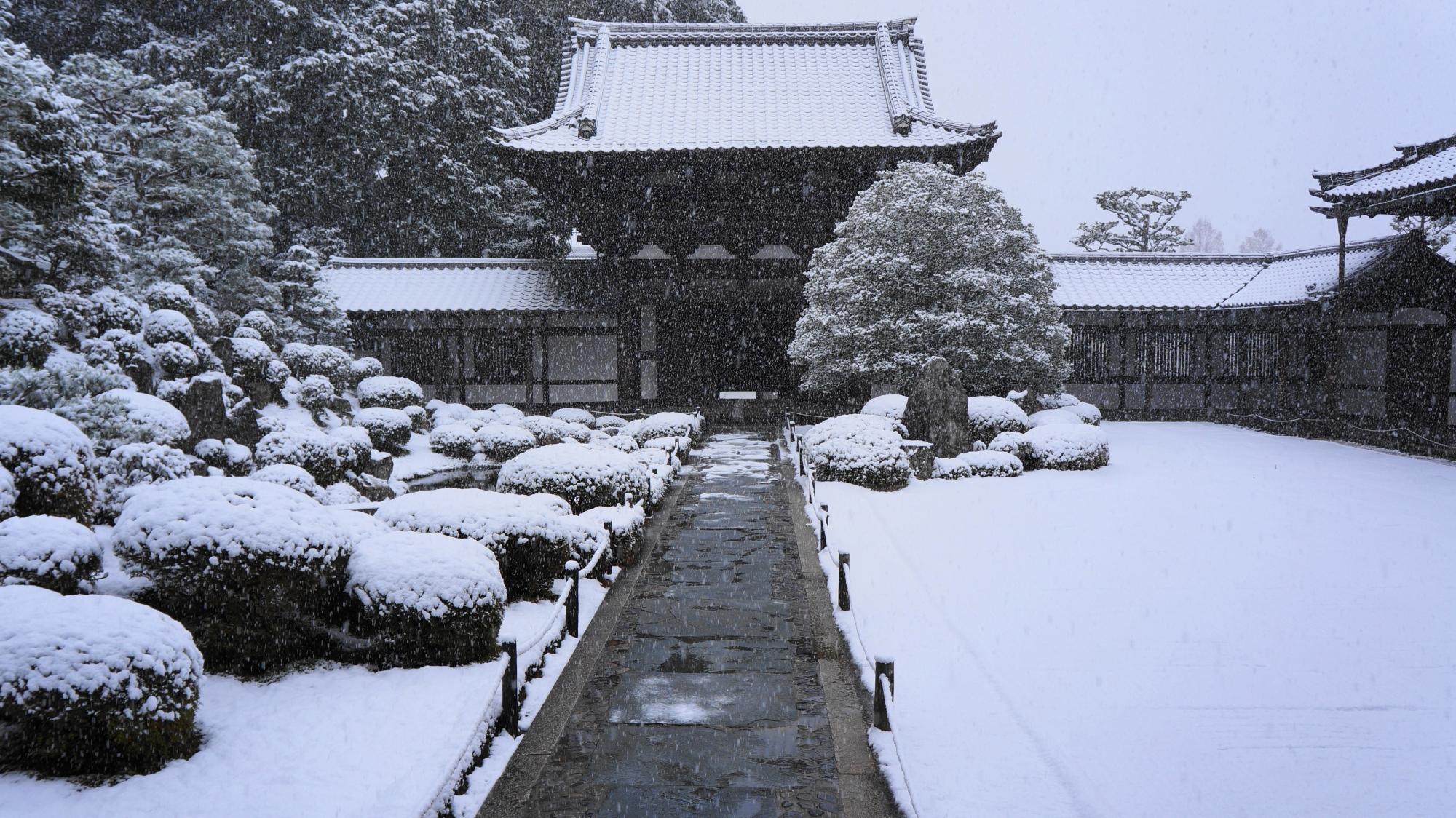 開山堂から眺めた雪の庭園と門