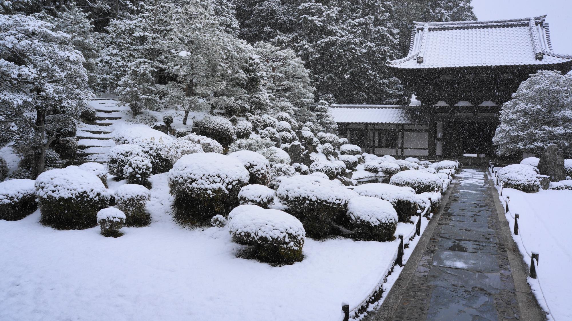 東福寺の絶品の雪の庭園