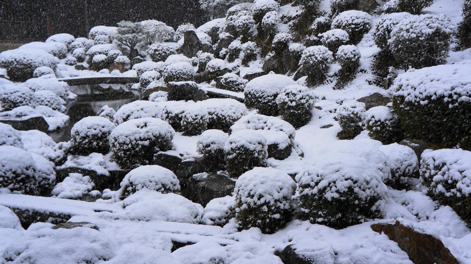 真っ白な庭園の池や岩や刈り込み