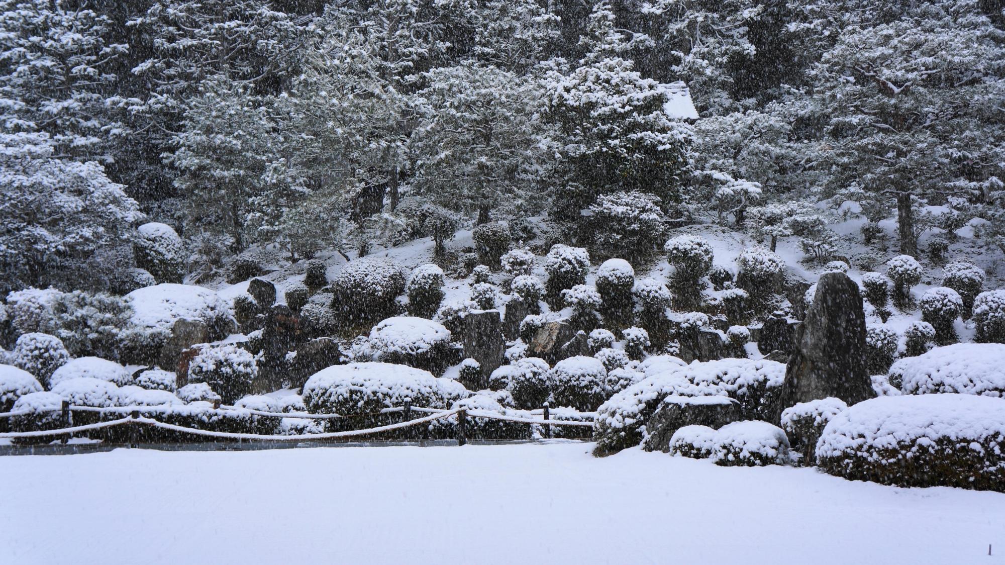たくさんの岩や刈り込みのモコモコした雪景色