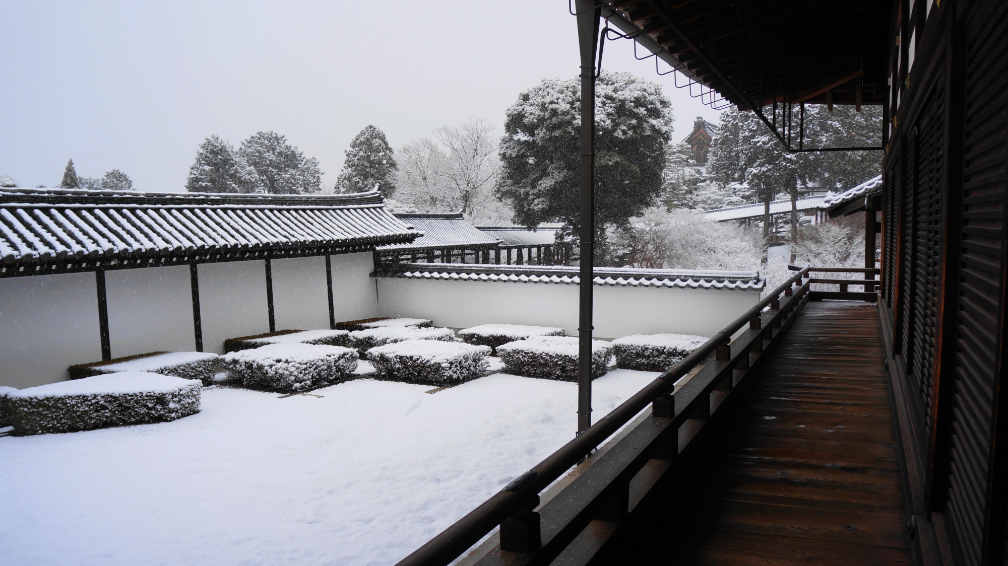 西庭から眺める雪化粧したもみじや通天橋