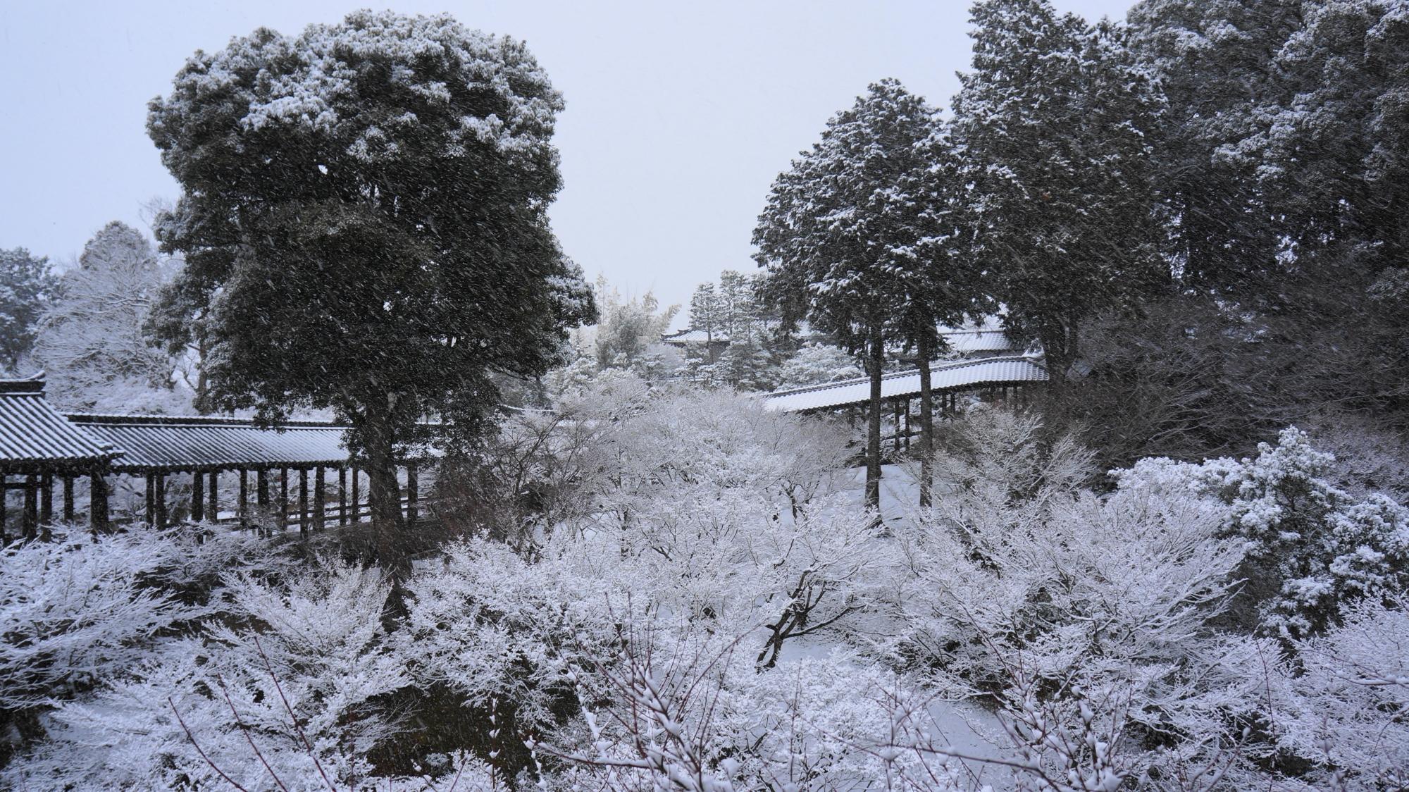 61年ぶりの大雪となった京都の東福寺
