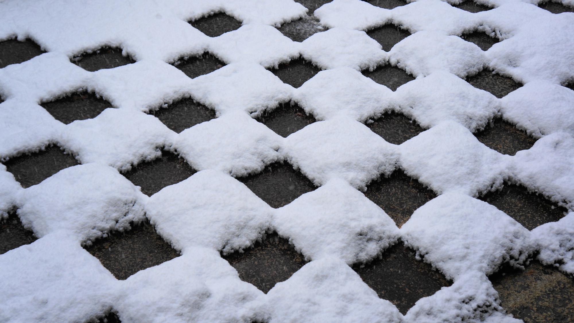市松模様を見事に象って積もる雪