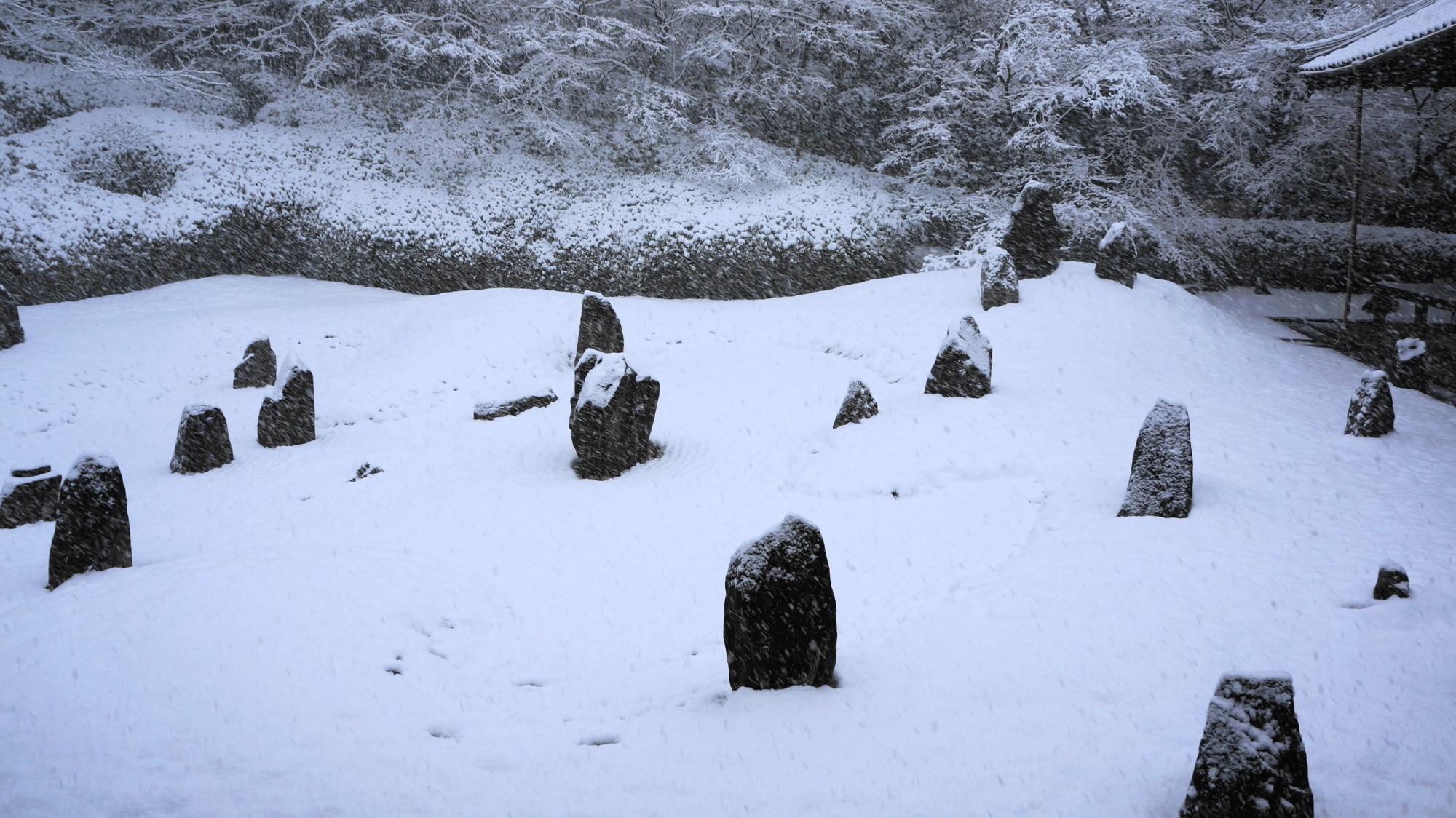 波心庭の力強い岩に積もる雪
