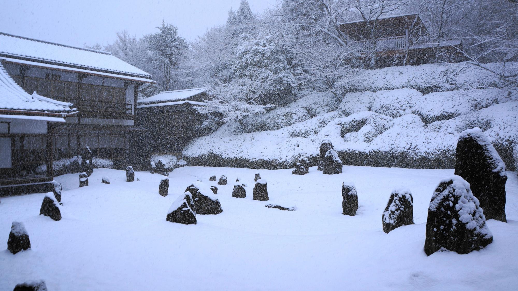 白銀の世界となった冬の光明院