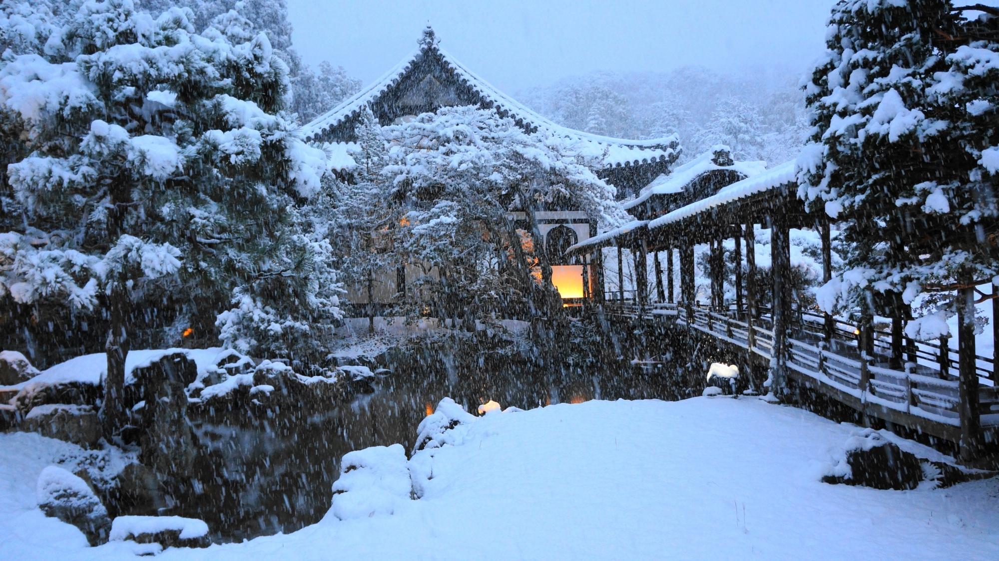 伽藍が真っ白にそまる雪の高台寺の