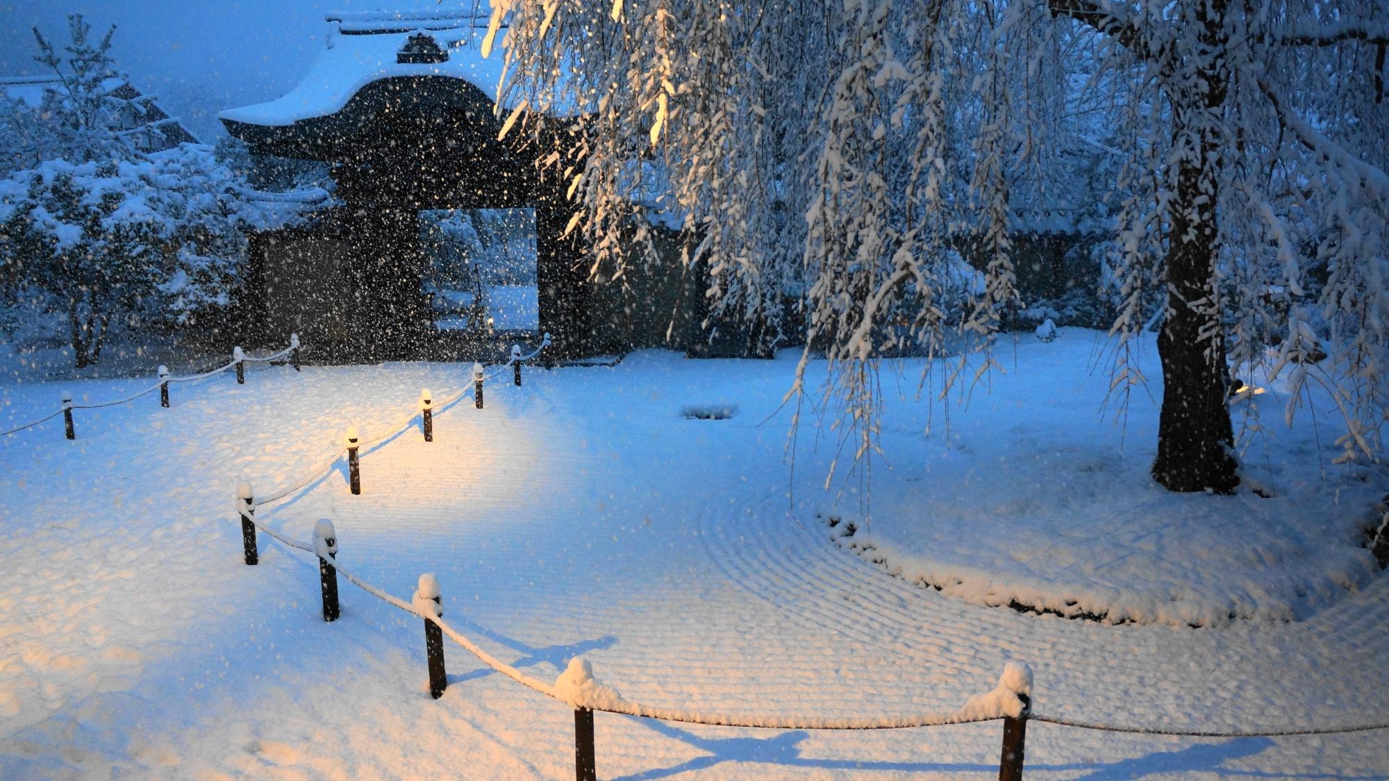 高台寺の幻想的な雪のしだれ桜