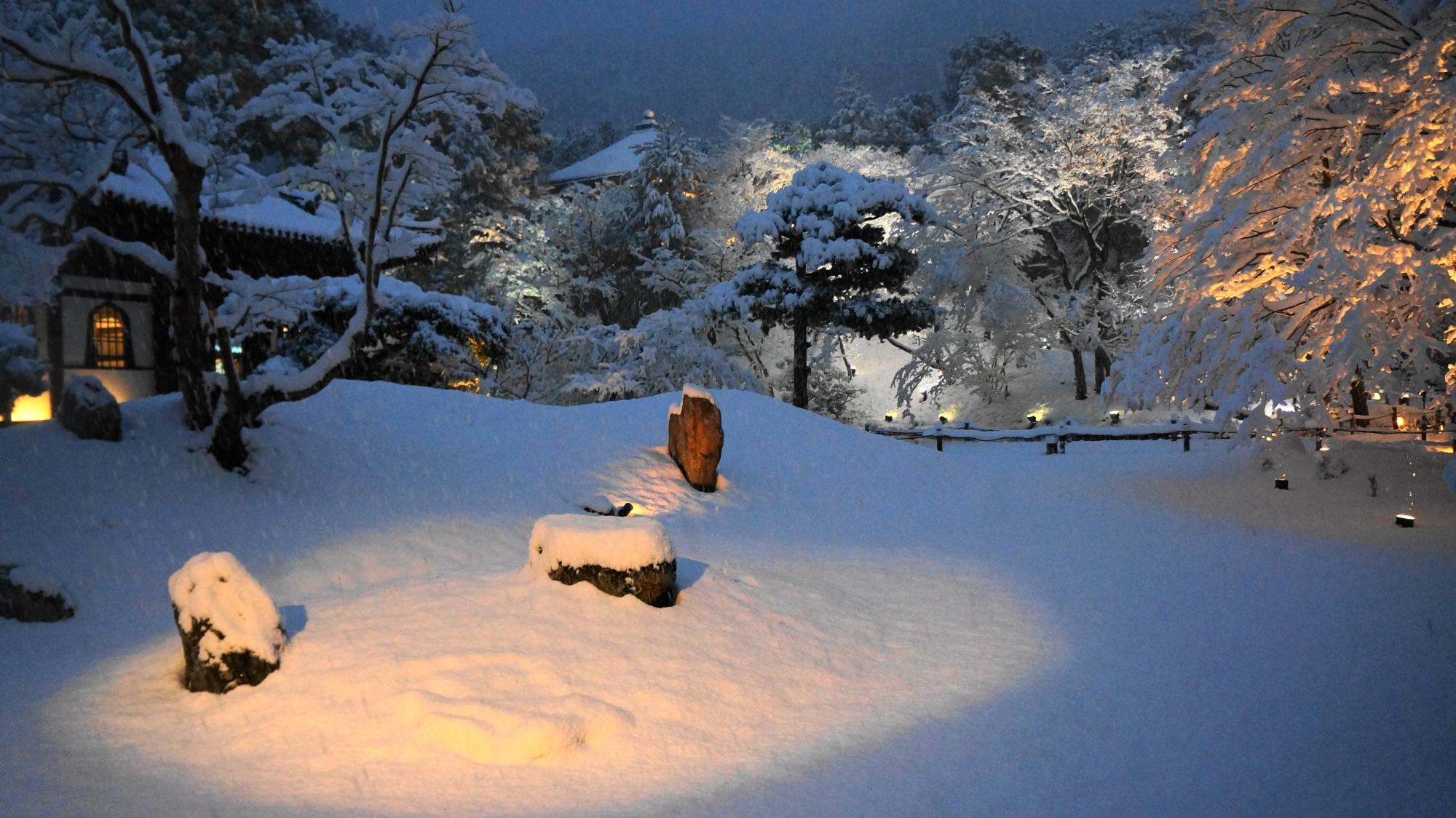 もみじの華やかな雪の花や雪の庭園の岩