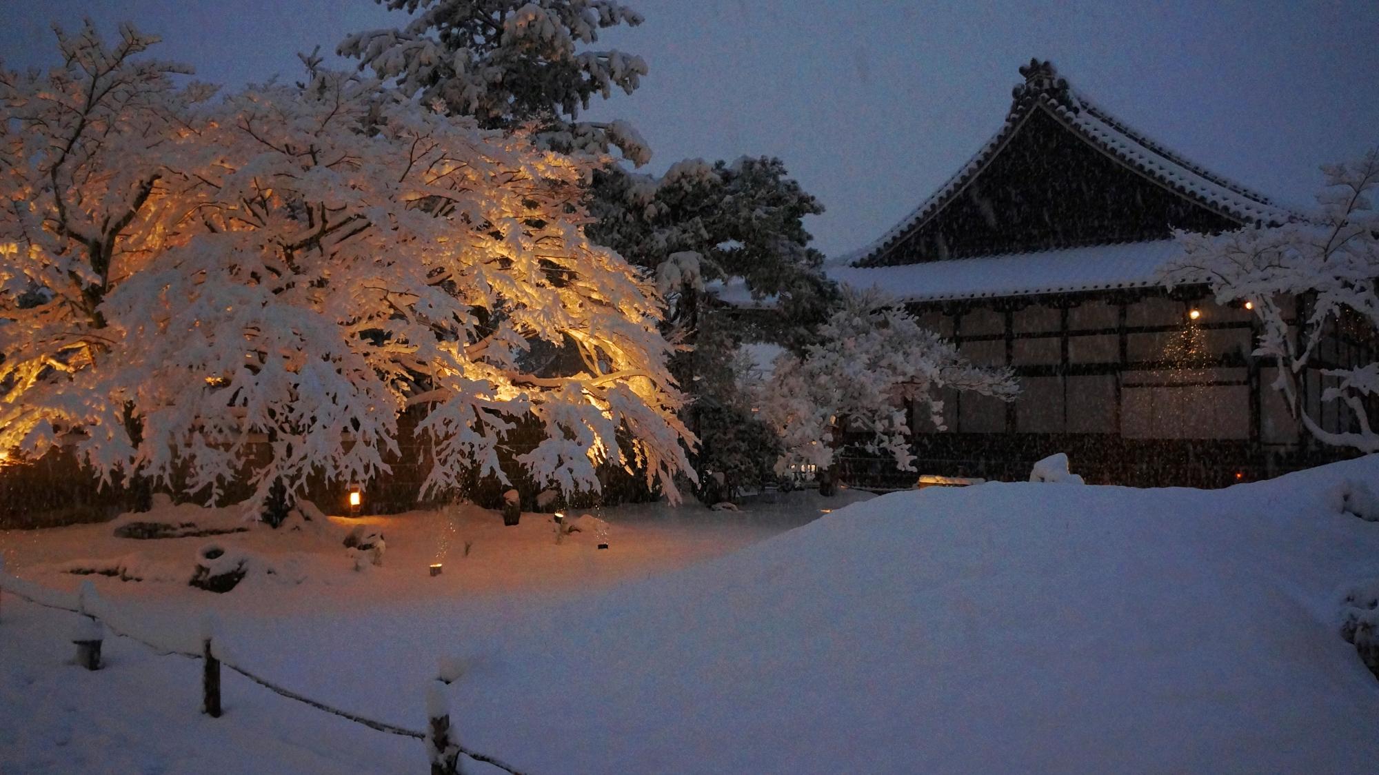 幻想的な雪のもみじと方丈のライトアップ