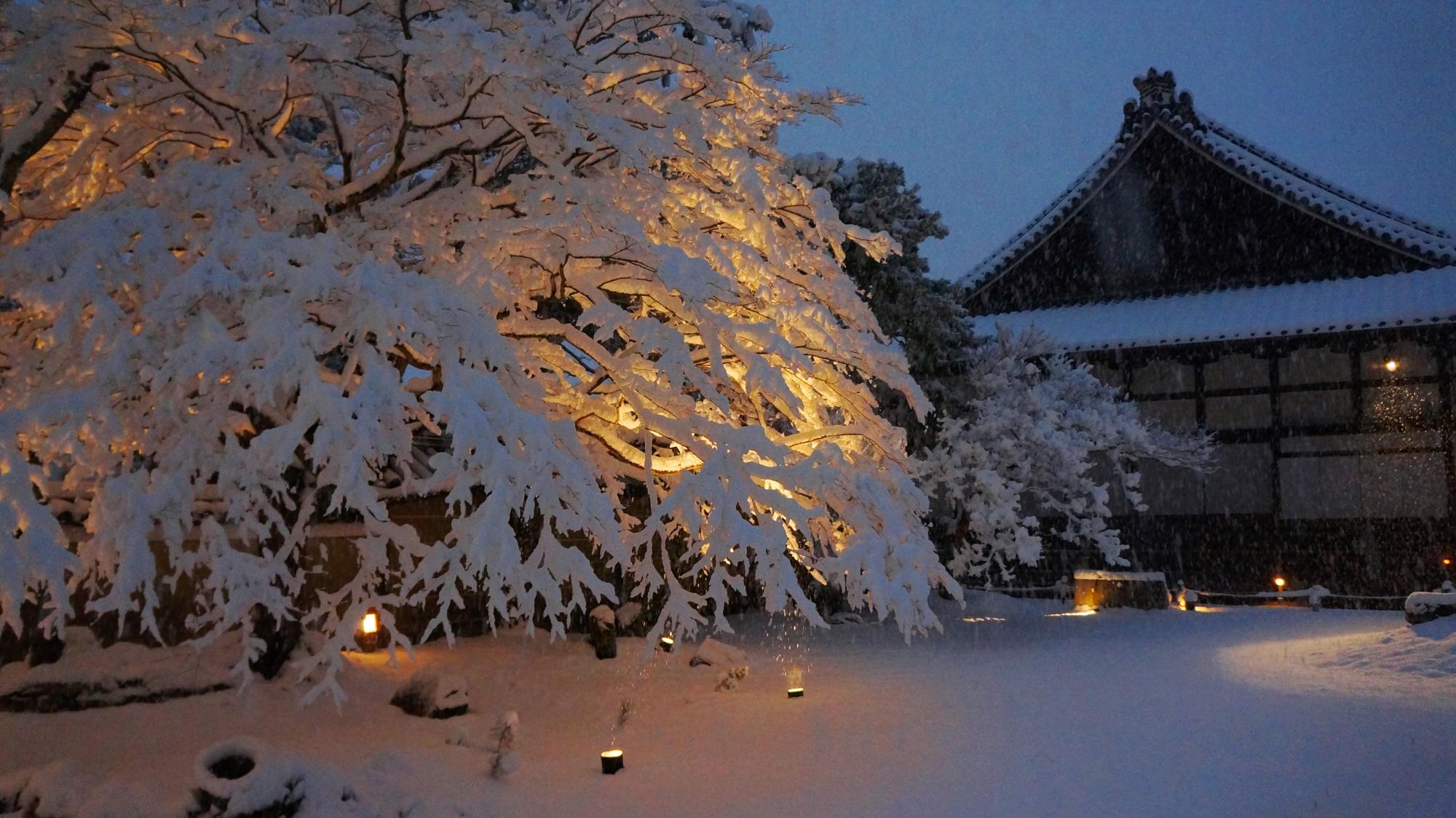 高台寺の方丈と庭園ともみじの雪景色
