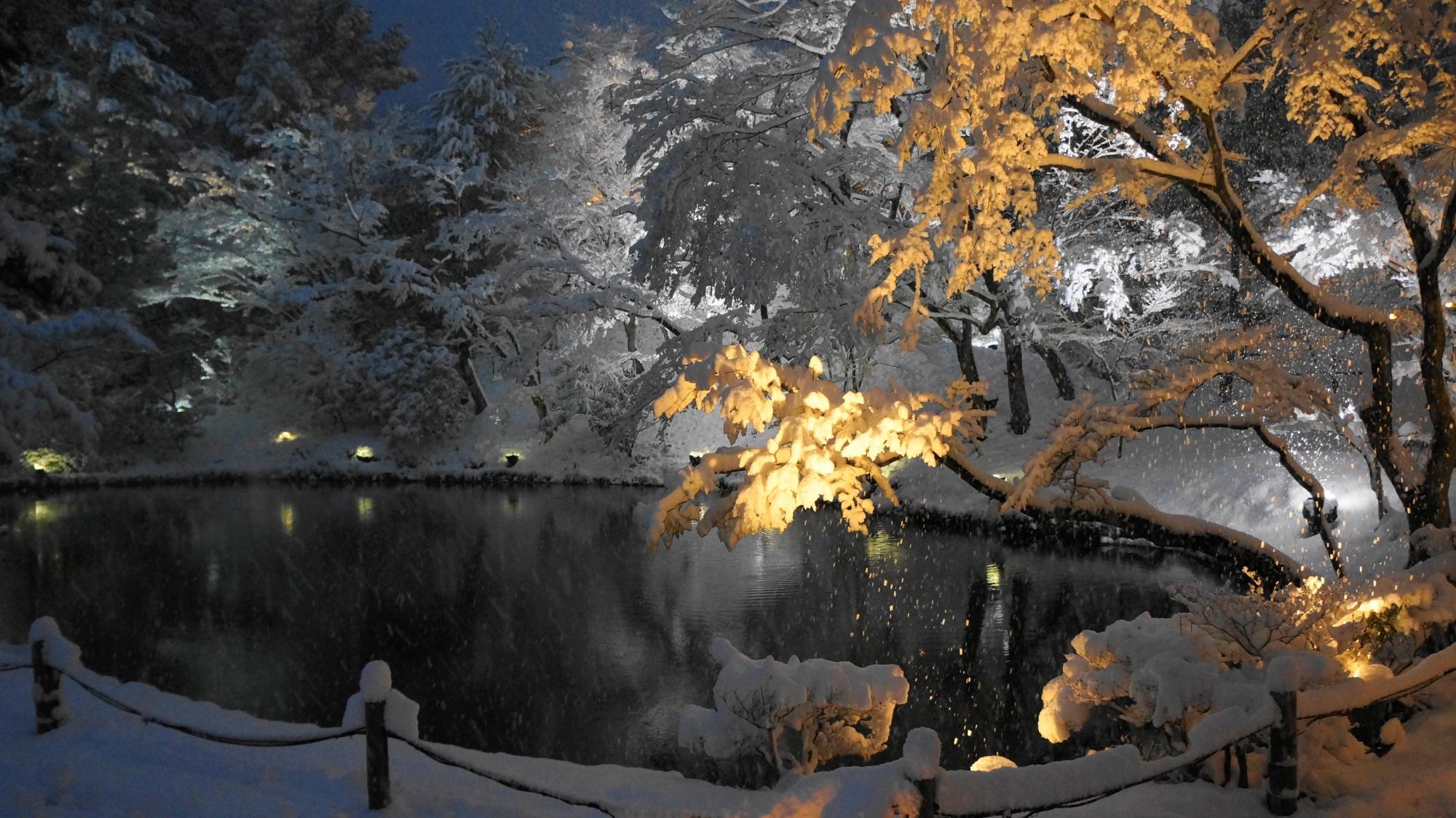 自然が作り出す芸術的な雪の花に囲まれた臥龍池