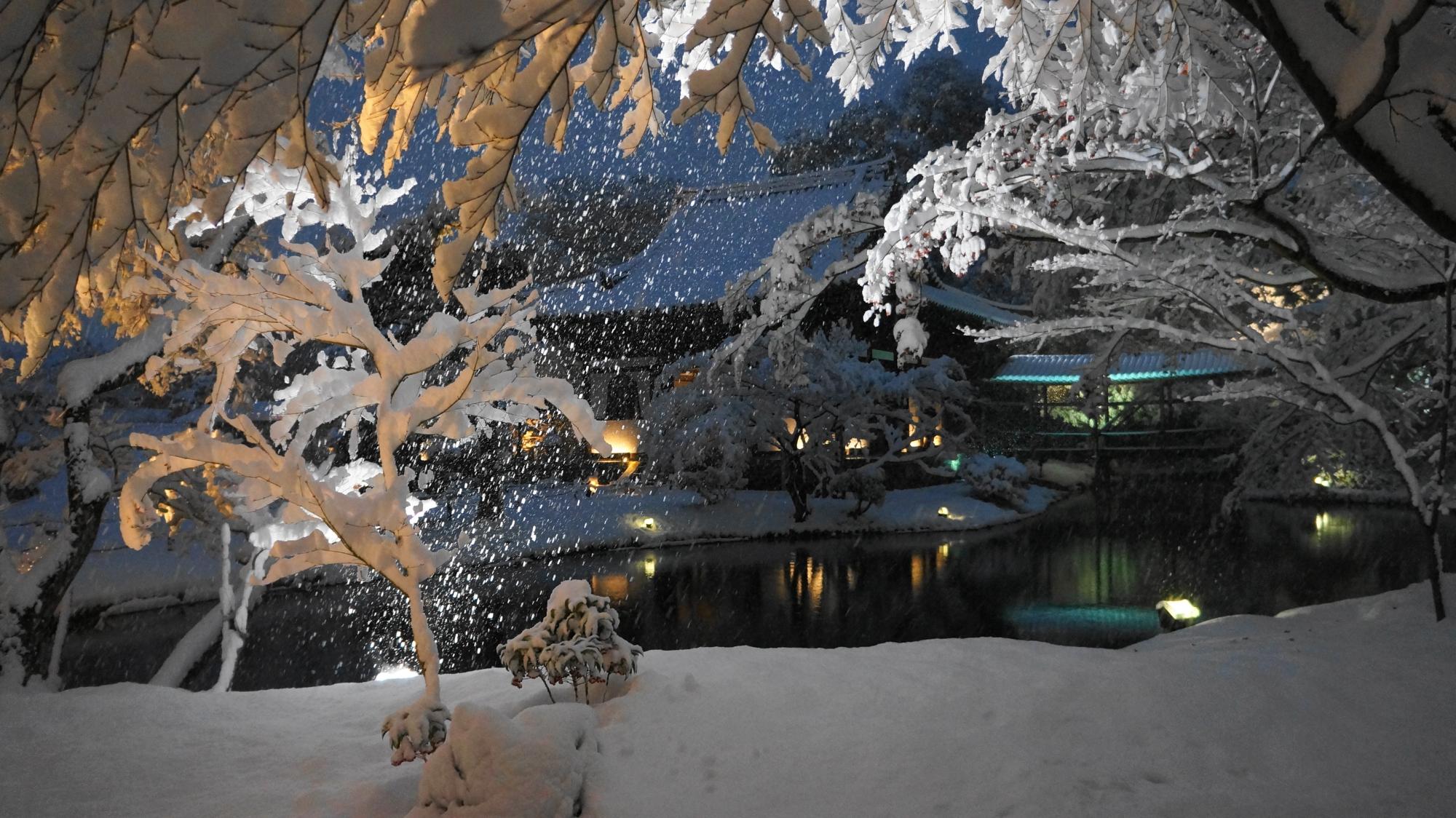 高台寺の臥龍池の雪景色