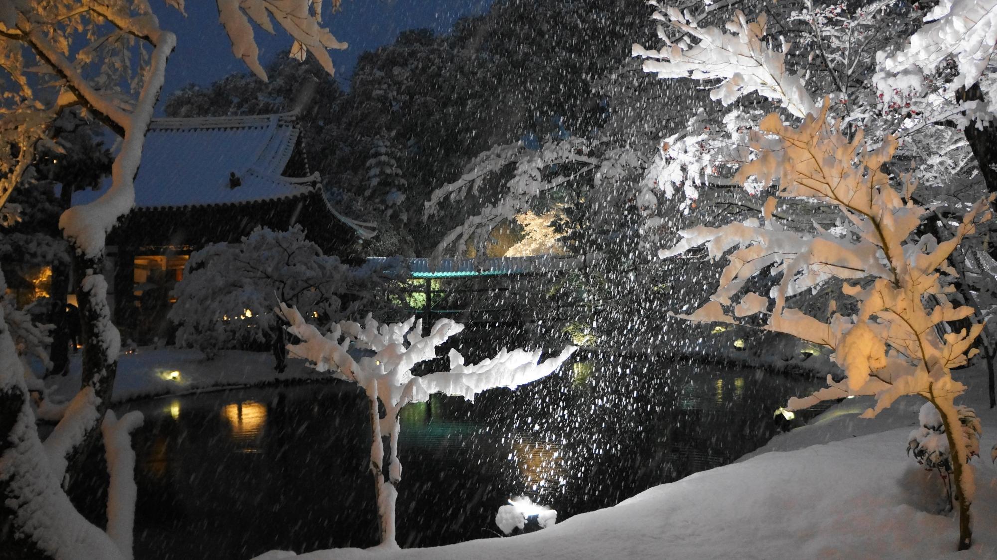 雪につつまれる臥龍池と開山堂の冬景色