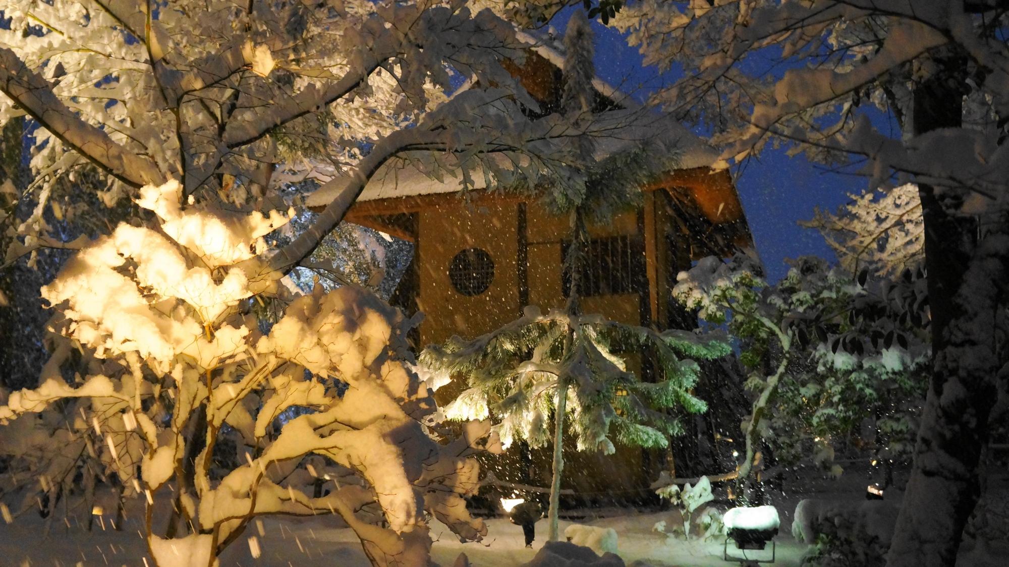 高台寺の時雨亭の雪景色