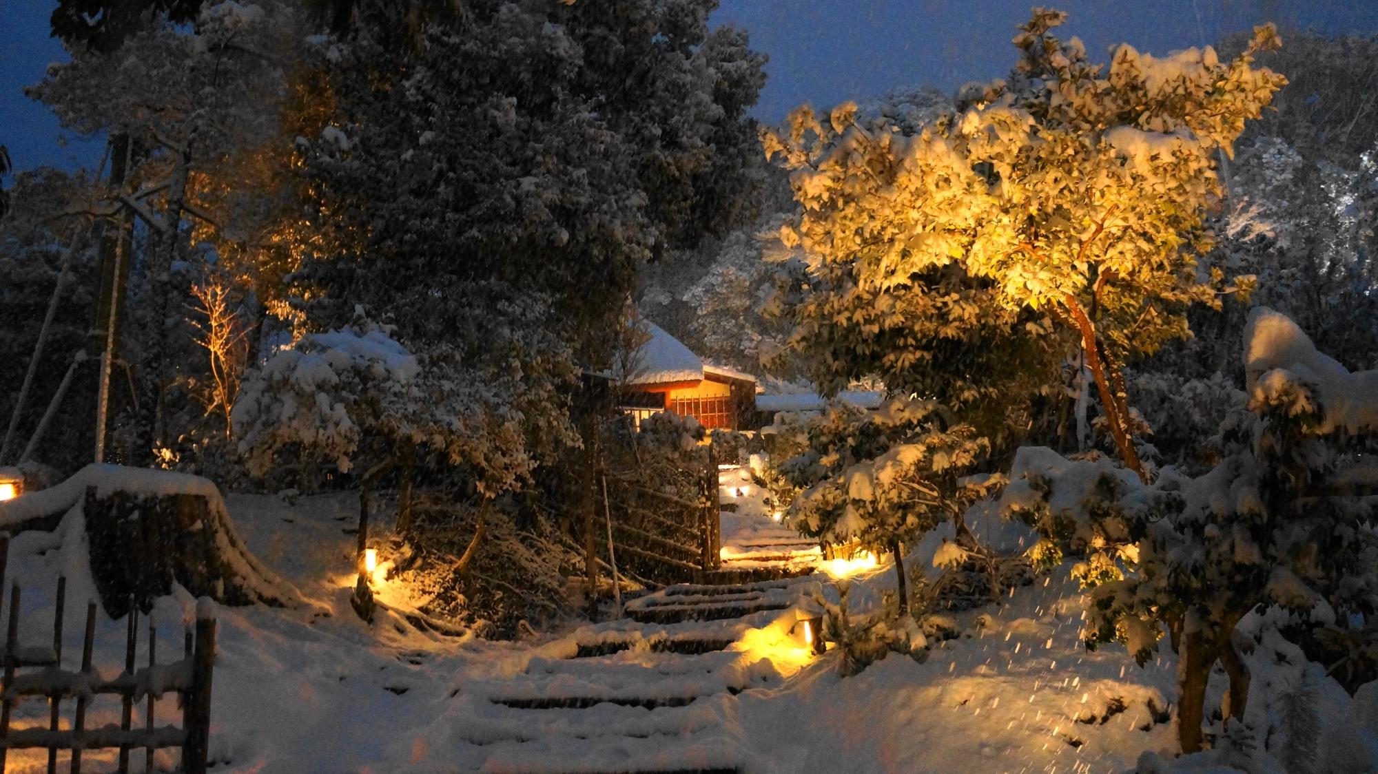 高台寺の白い趣きのある雪の参道