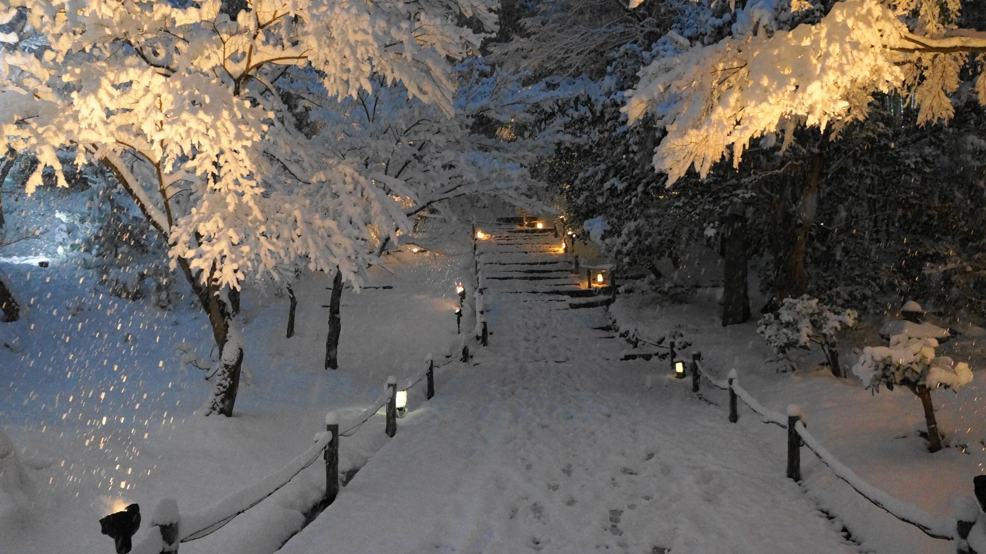 高台寺の京都とは思えない参道の雪景色