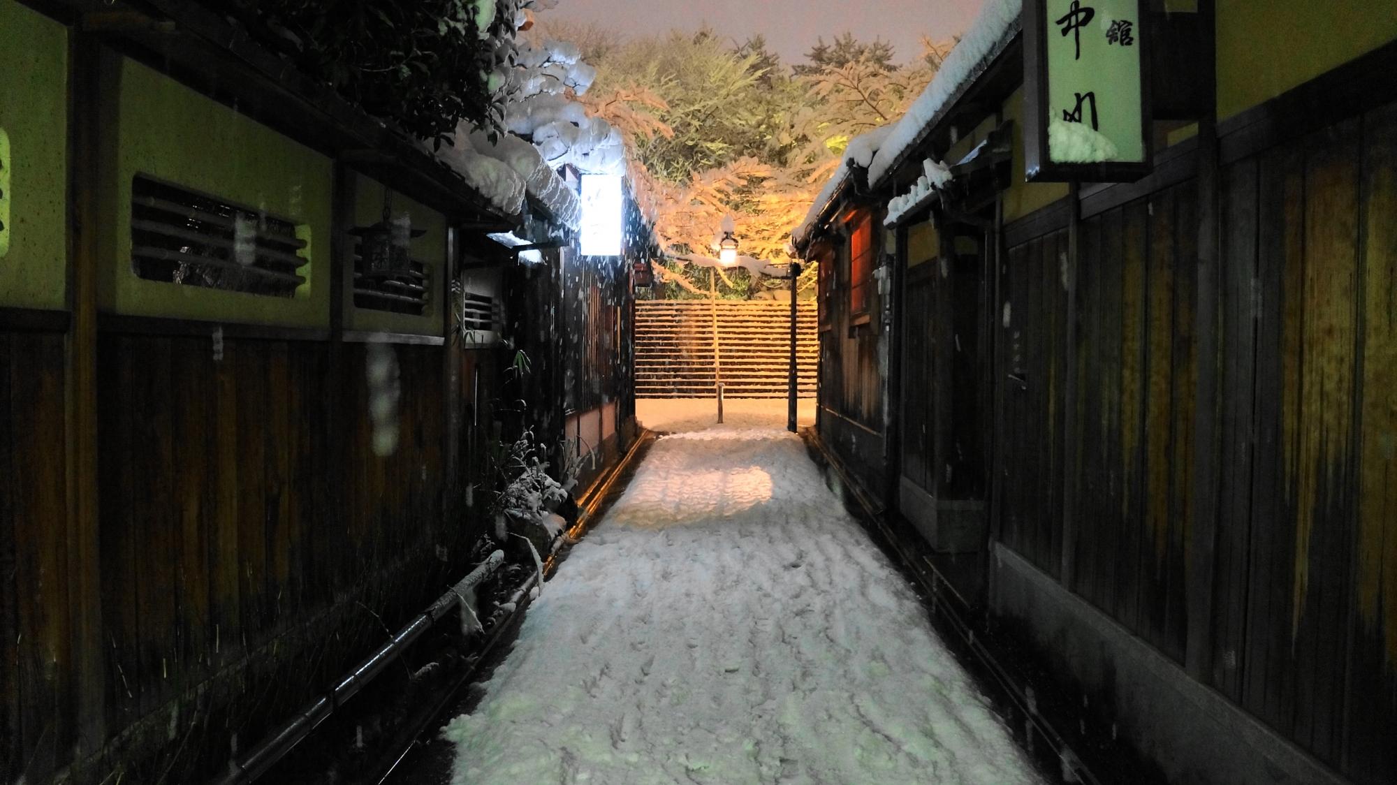 華やかな雪の花と雪の石塀小路