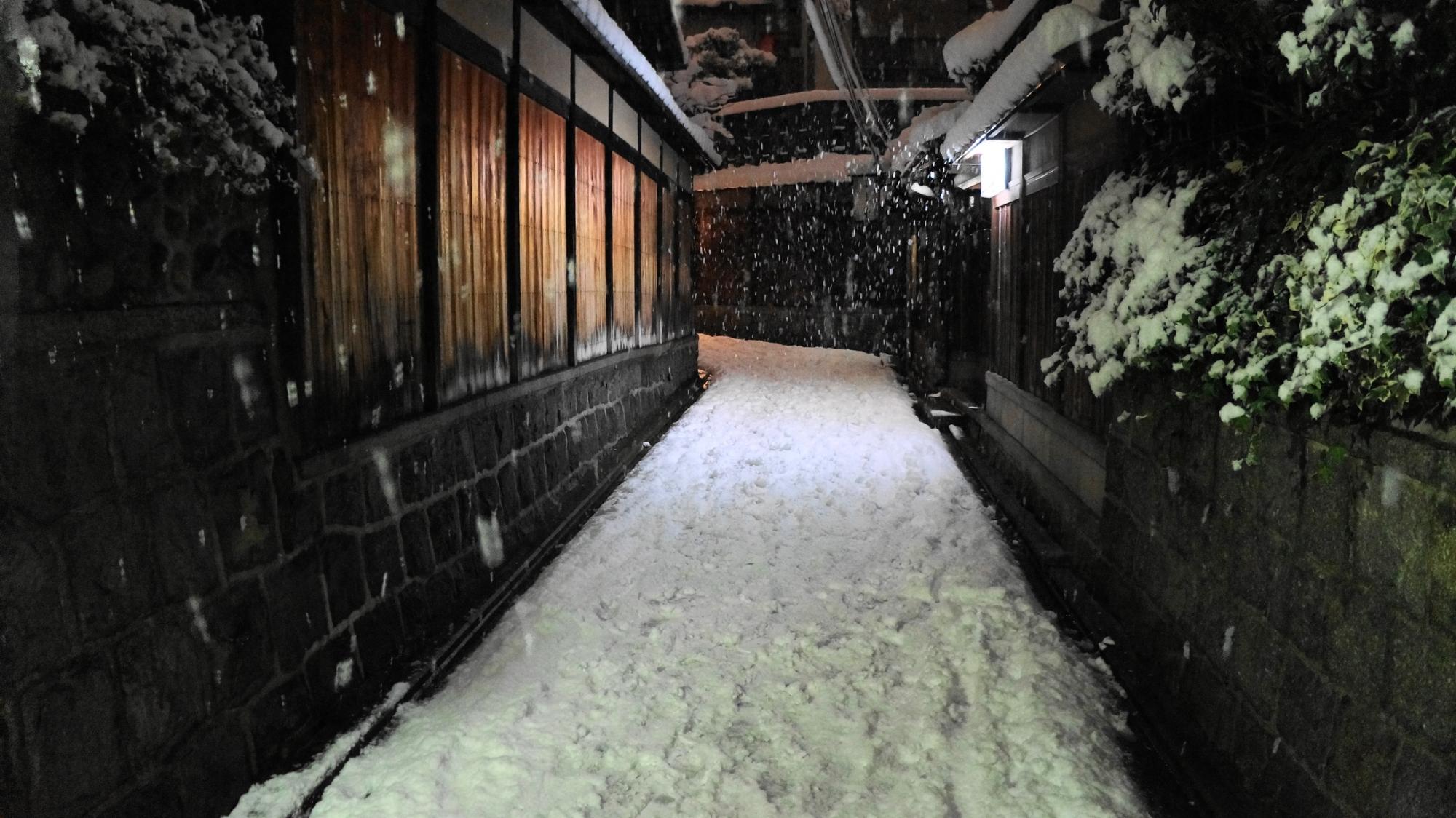 石塀と木の塀に囲まれた雪の隠れ道
