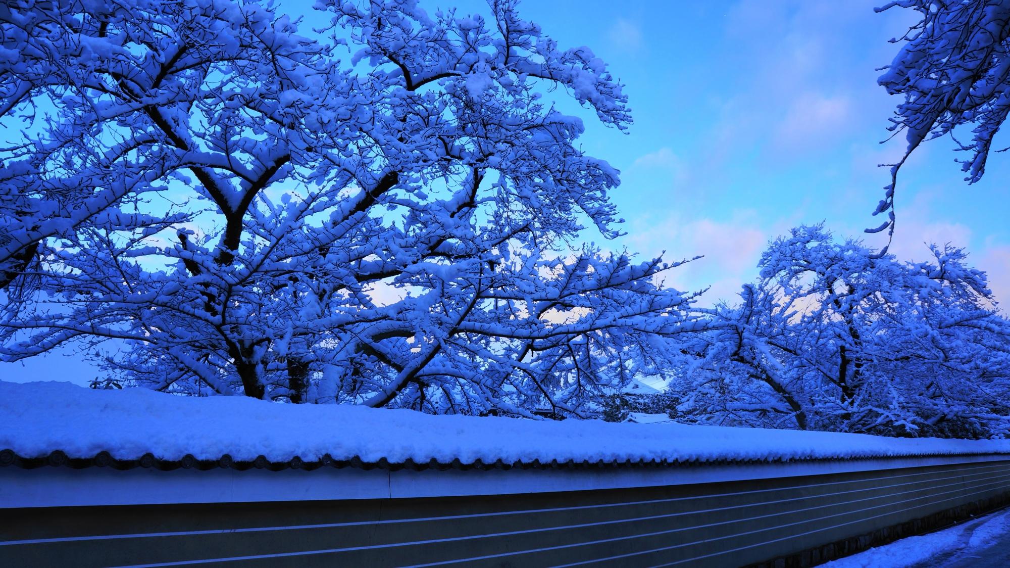 ピンクの朝焼けの出る幻想的な花見小路通りの冬景色