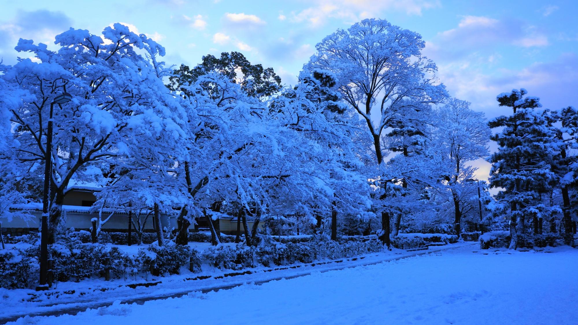 建仁寺の豪快かつ華やかな雪の花