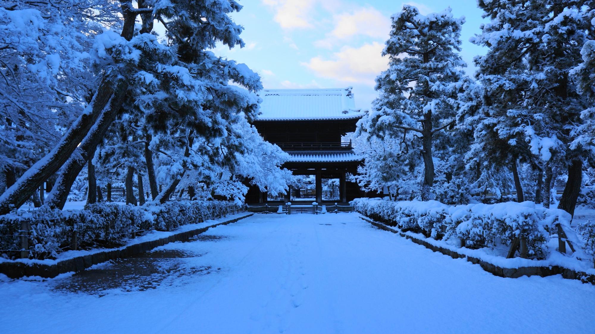 早朝の静まり返った境内の中に佇む雪の三門