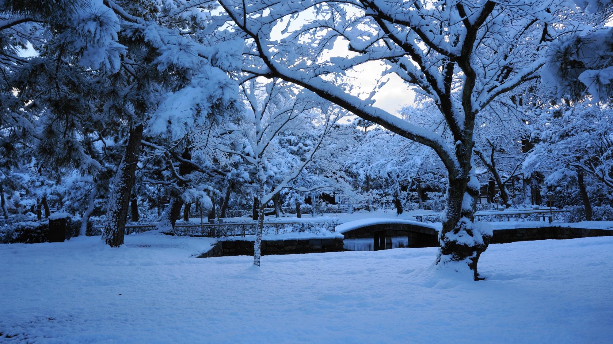建仁寺の三門や池周辺の満開の雪の花