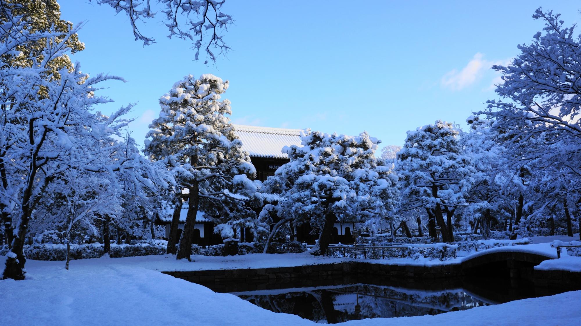 池の周りも一面真っ白になった建仁寺