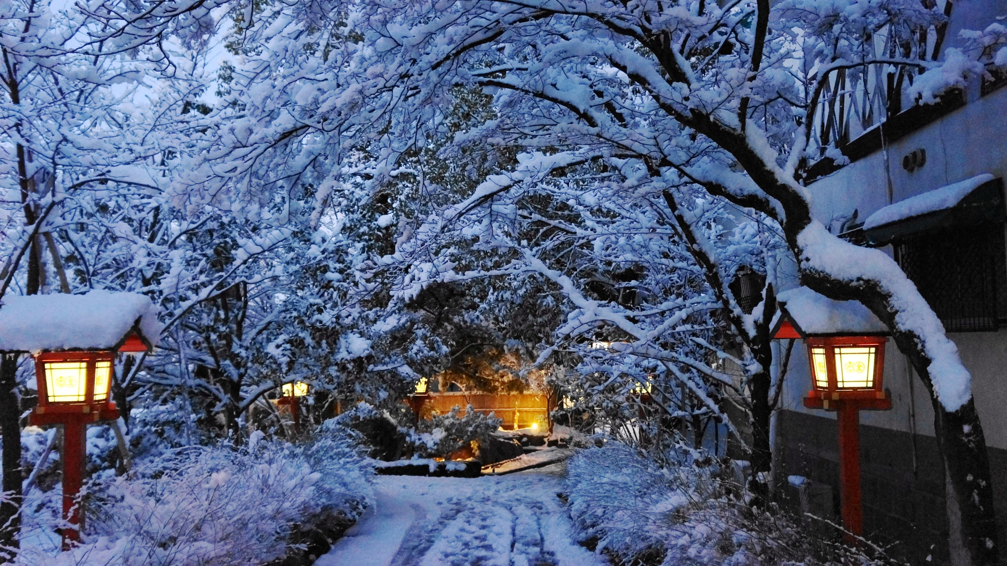 芸術的で華やかな雪の花が咲く参道