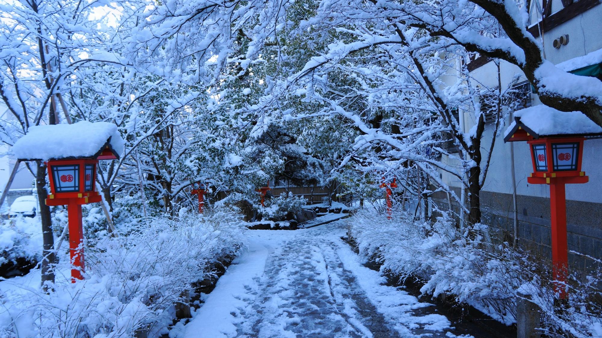 安井金比羅宮の真っ白な雪につつまれた参道