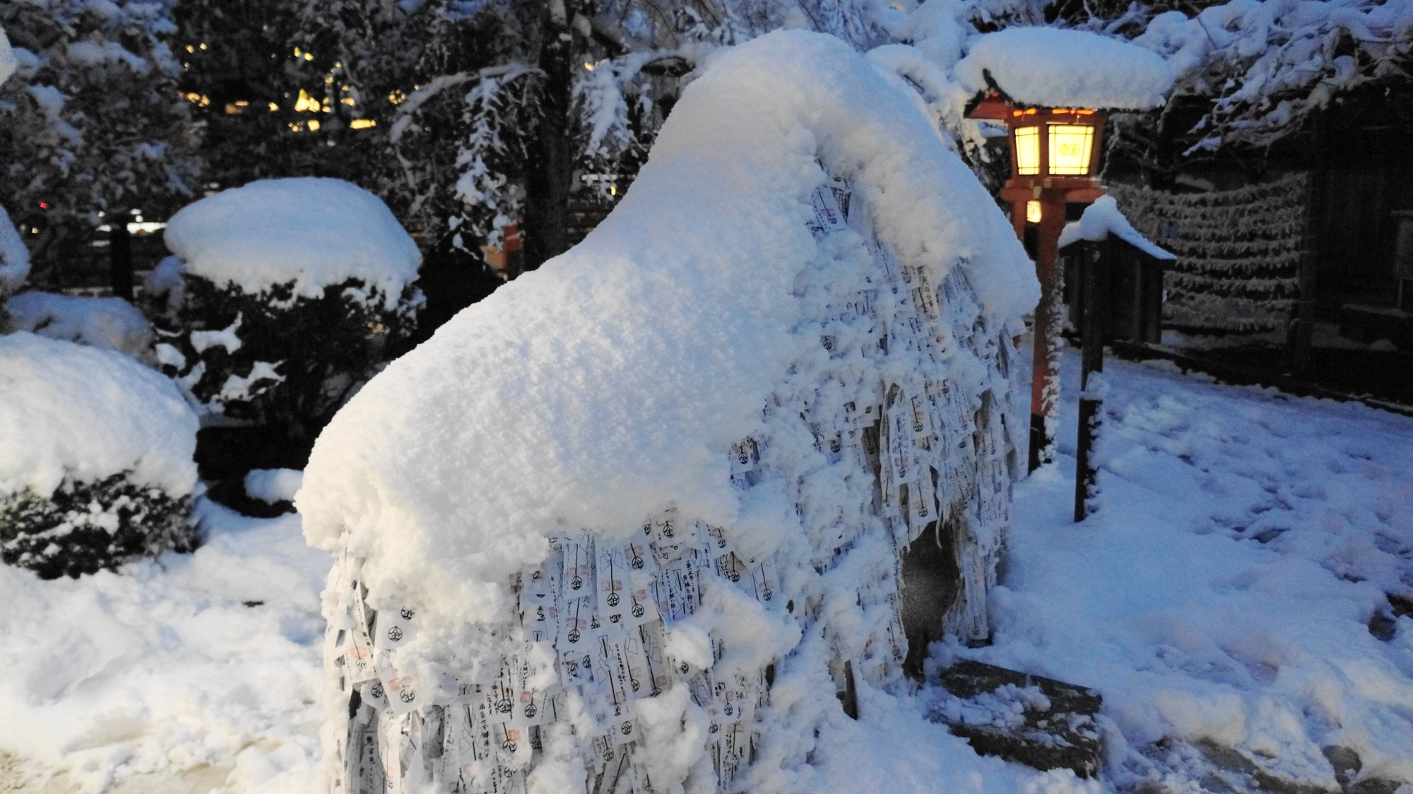 真っ白な雪のいっぱい積もる安井金比羅宮
