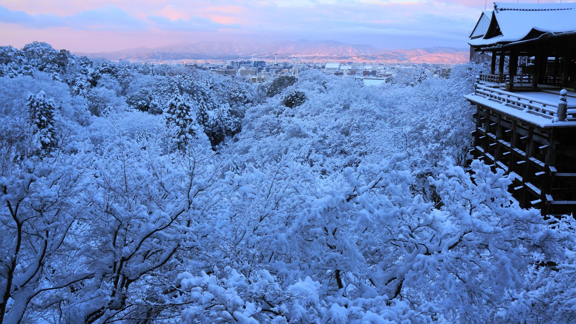 雪と朝焼けにつつまれた舞台と木々