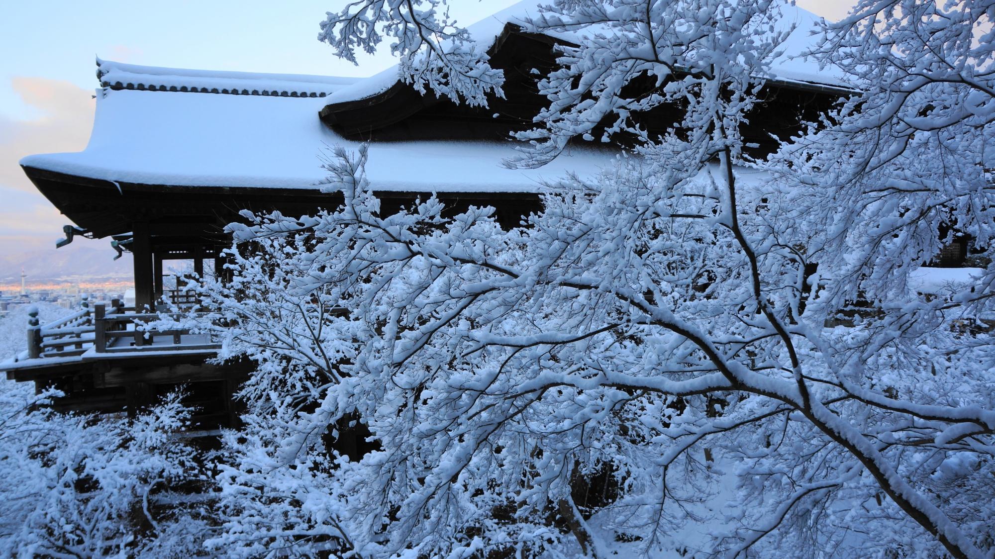 自然の作り出す雪の芸術作品